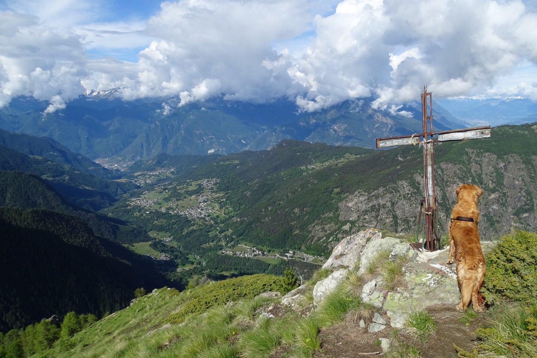vista sul fondovalle dalla croce posta poco sotto la cima