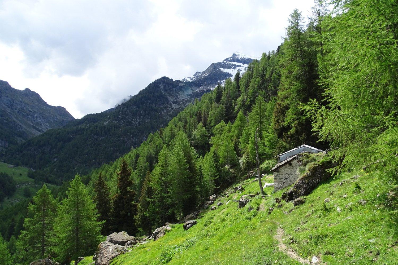 baita dell'Alpe Balavra (1881 m)