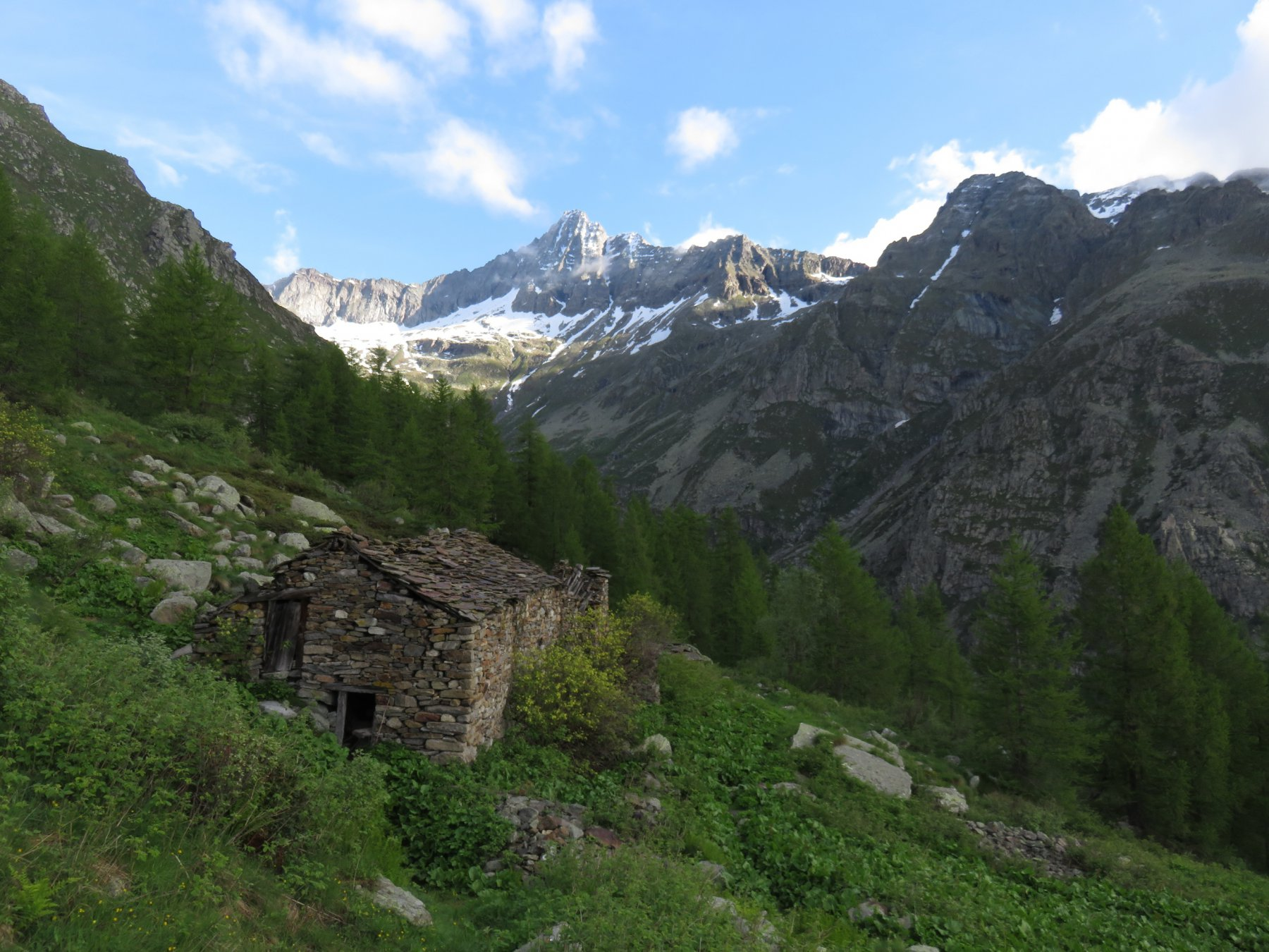 Alpe Vallerei con Torre Lavina