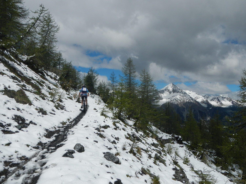 il tratto di sentiero che sale al colletto tra le due cime