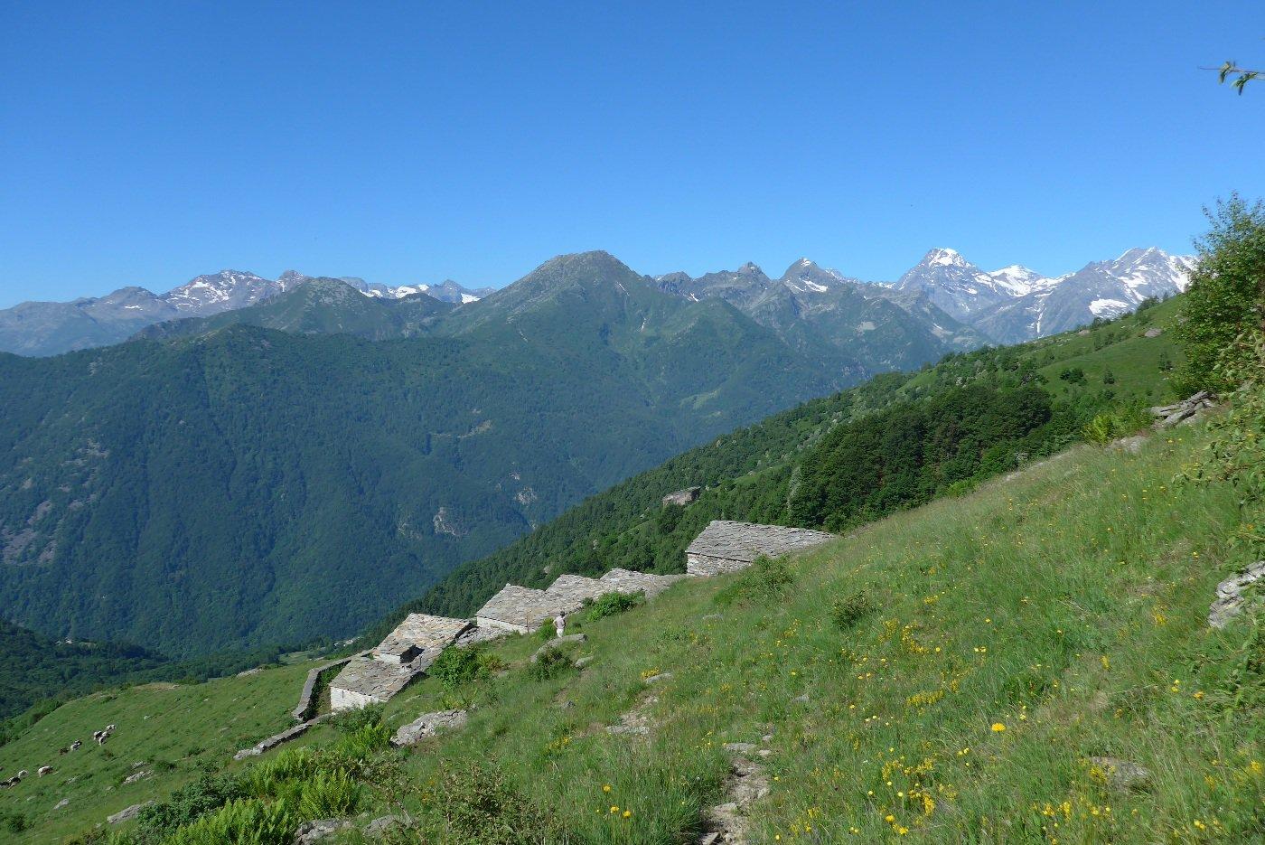 All'Alpe Paglia inferiore