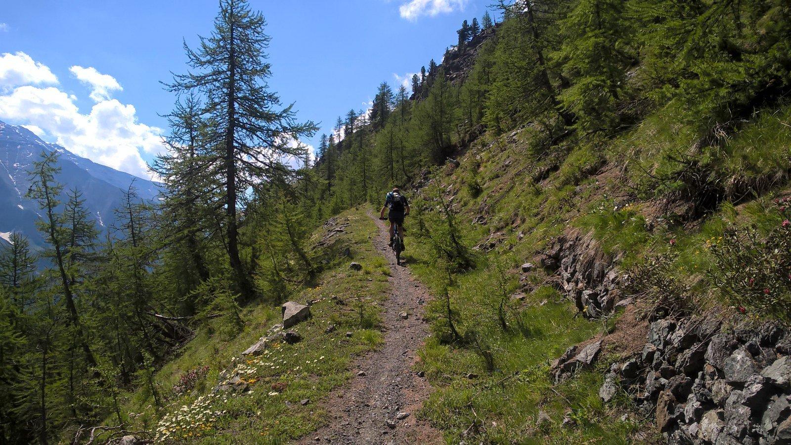 Sentiero verso il colle ben pedalabile