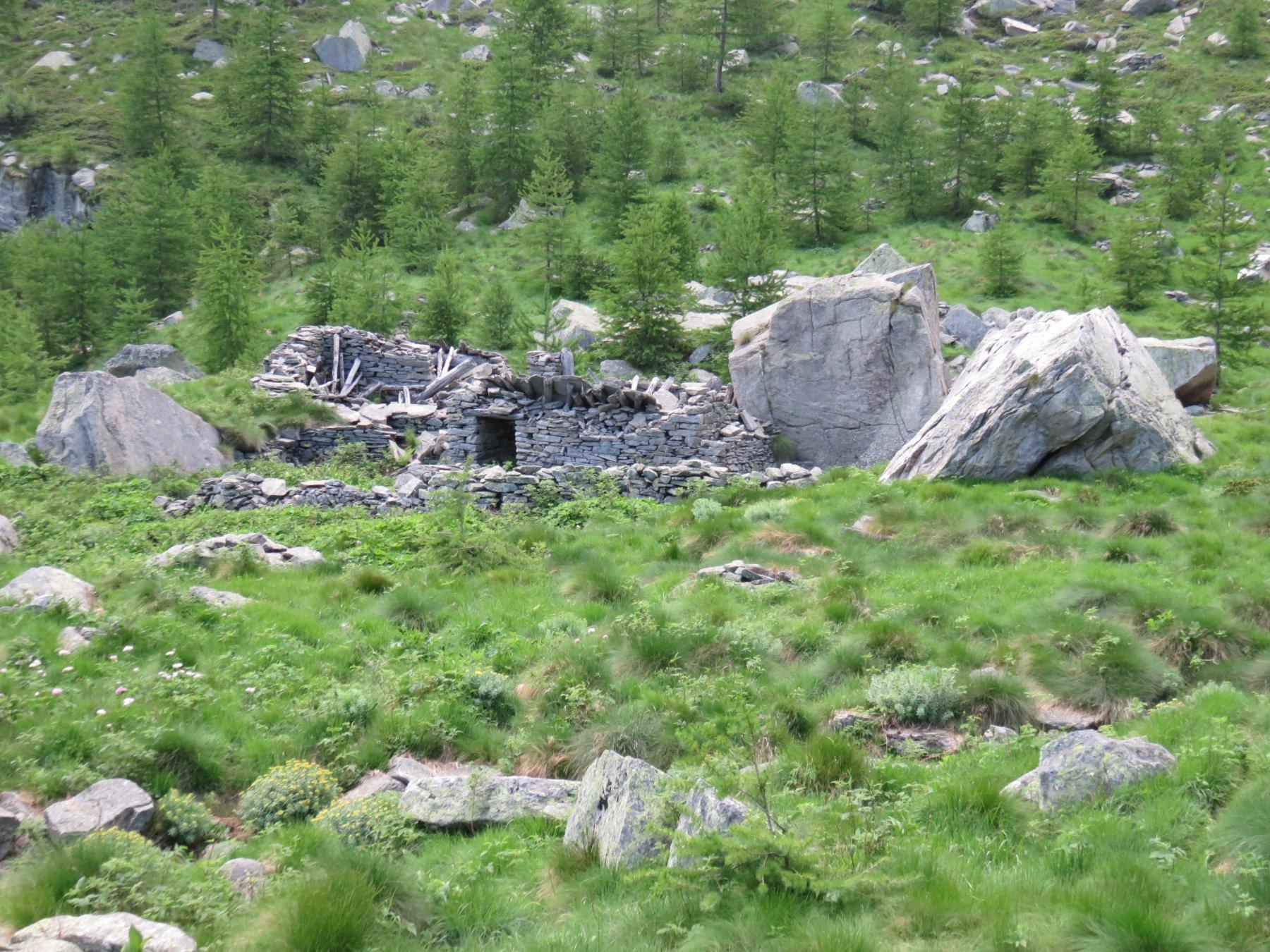 Alpe Vallone inferiore