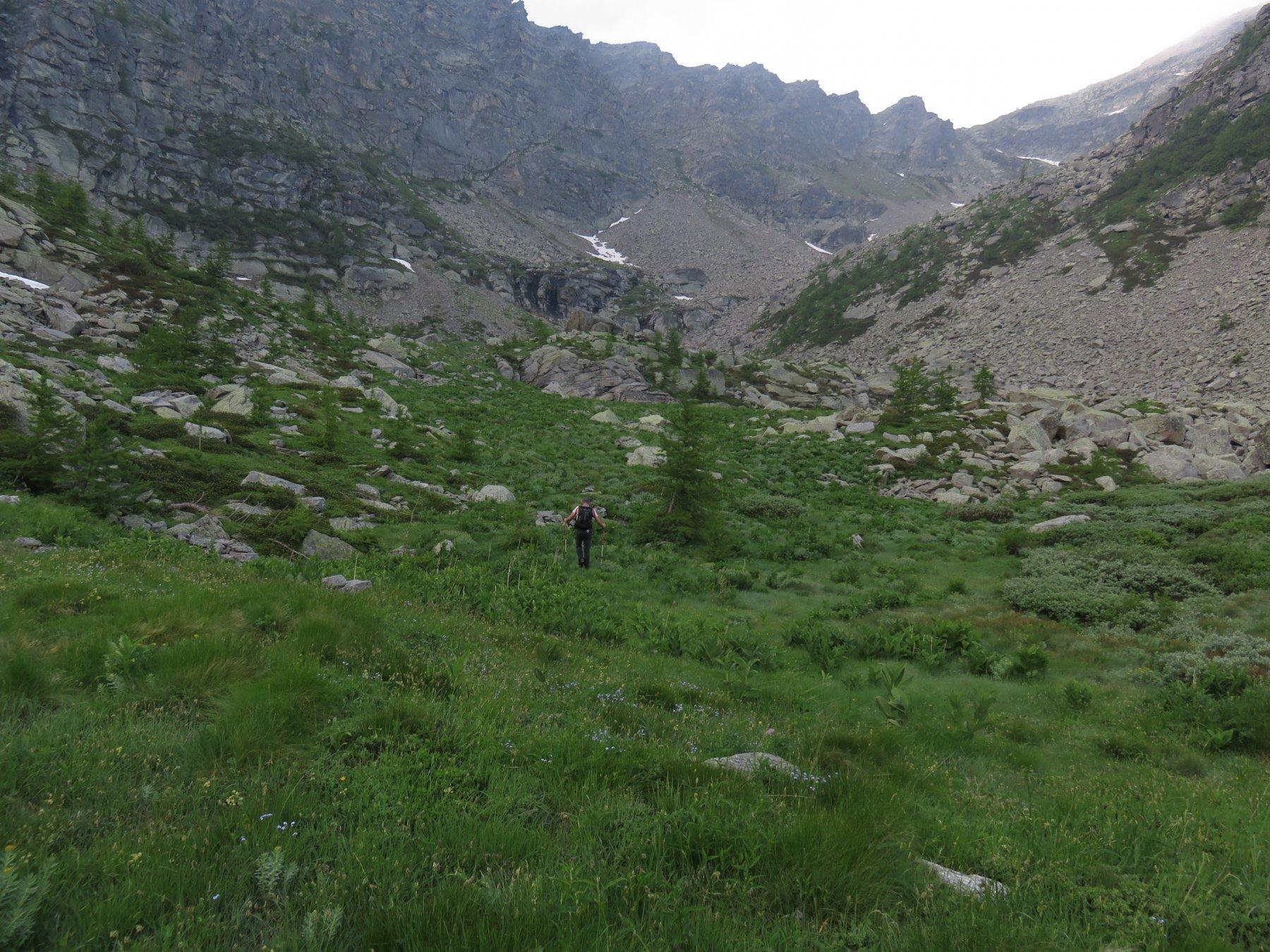 Arrivando all'Alpe Vallone superiore