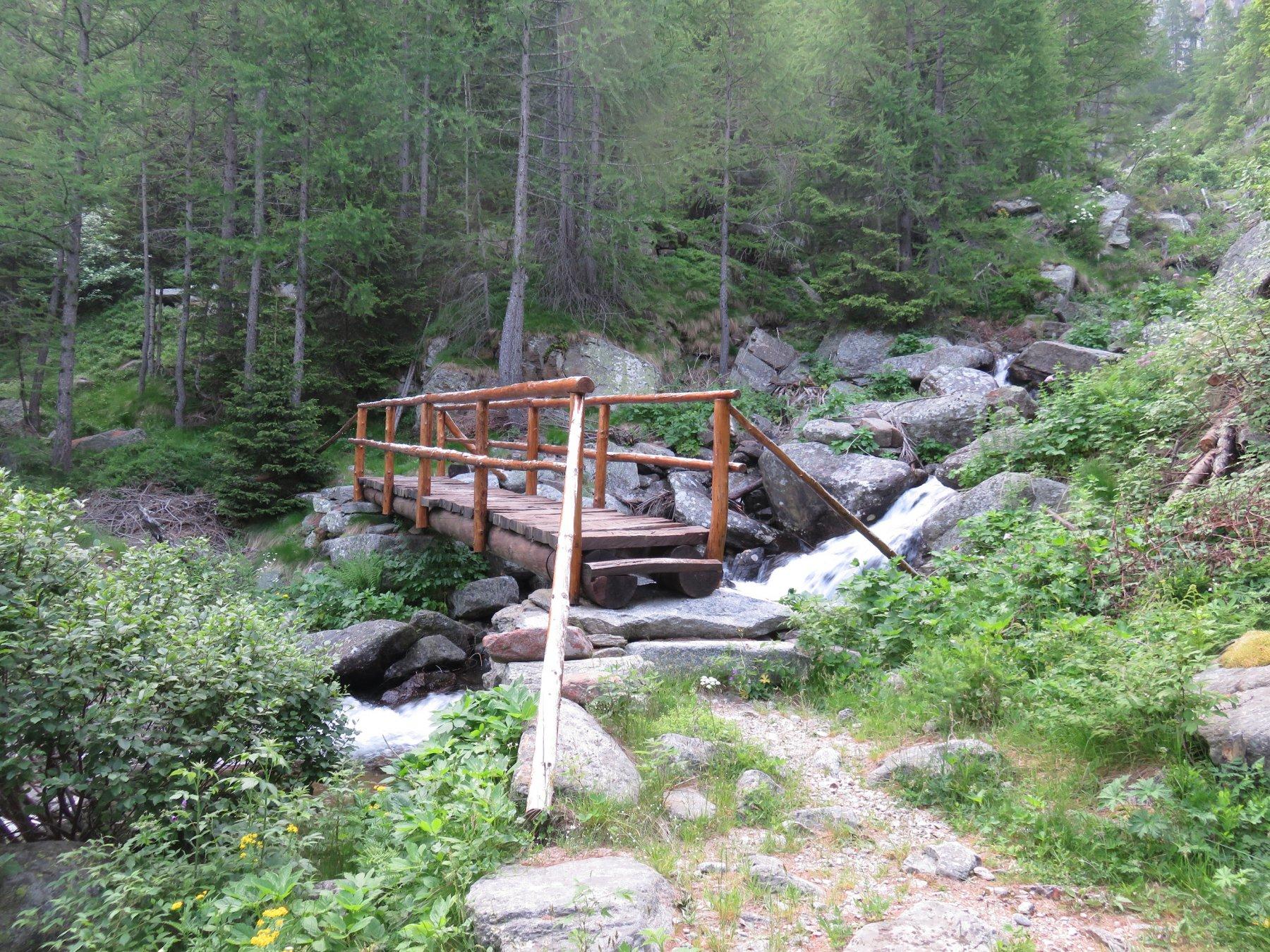 Ponte sul Rio Crussionay