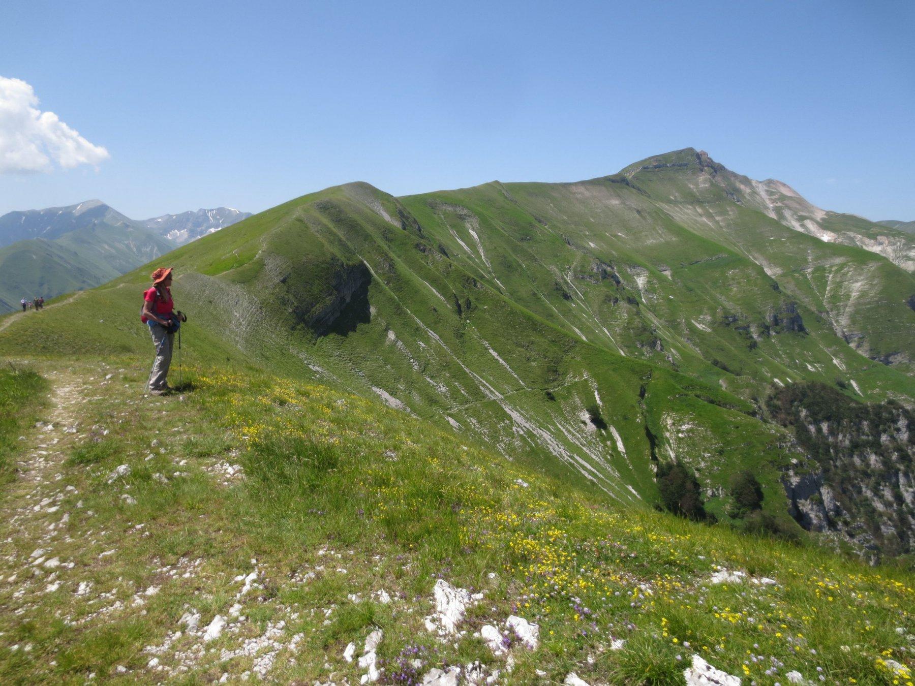 La cresta da percorrere, e il Monte Sibilla in fondo