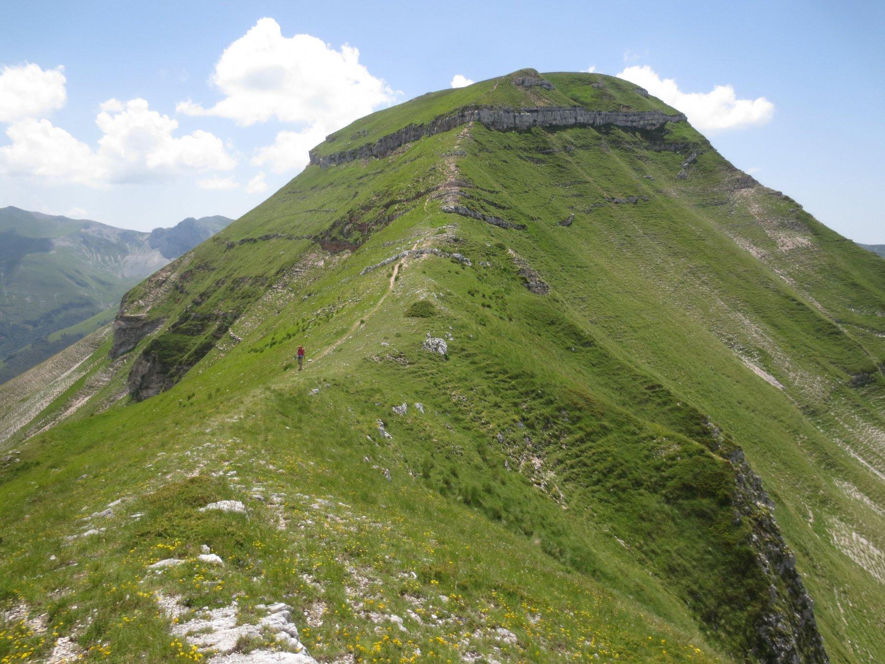 La parte sommitale del Monte Sibilla. Si vede la fascia di rocce da superare per arrivare in cima.