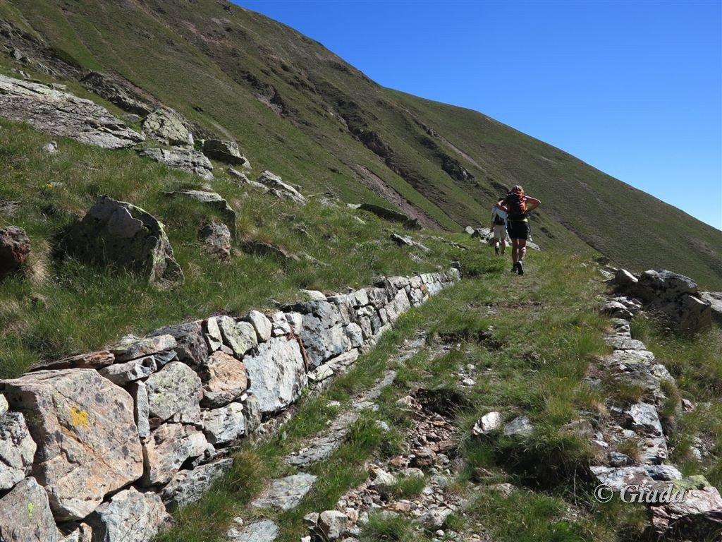 Peiron (Monte) per il Colle di Panieris e la cresta sud 2016-07-03