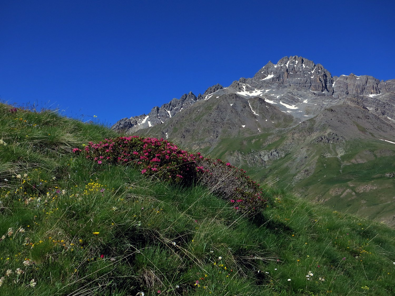 Il Pic de Rochebrune