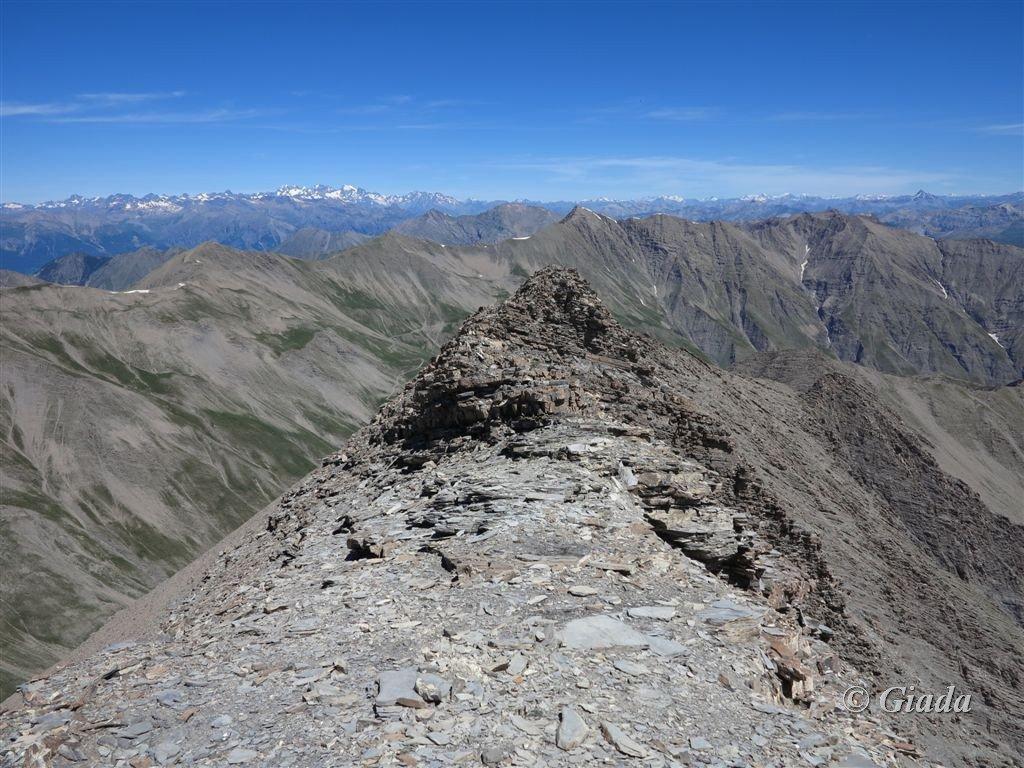 Panorama dalla vetta verso Ecrins e Monte Bianco