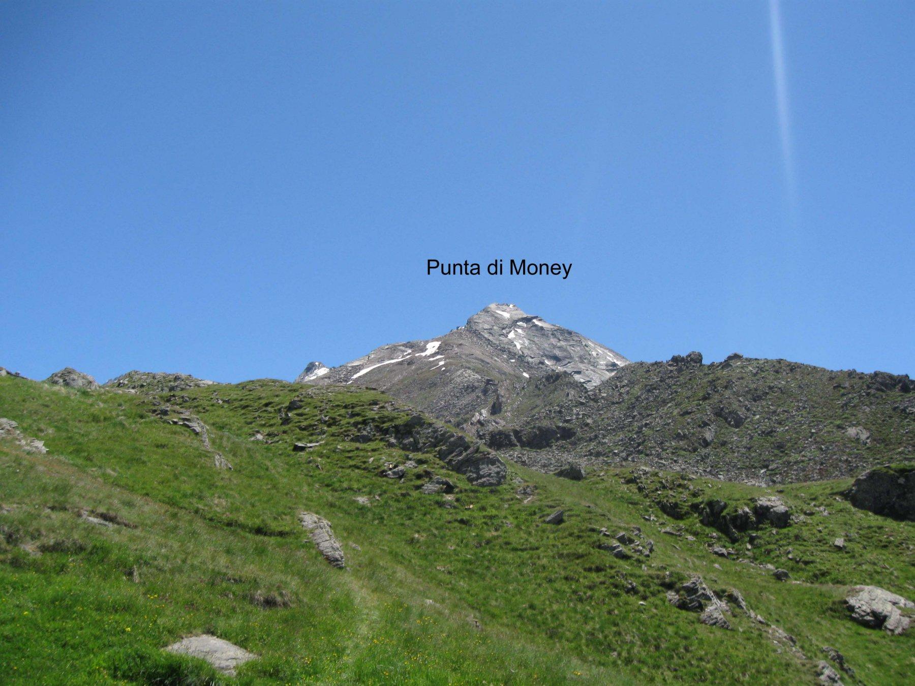 Punta di Money