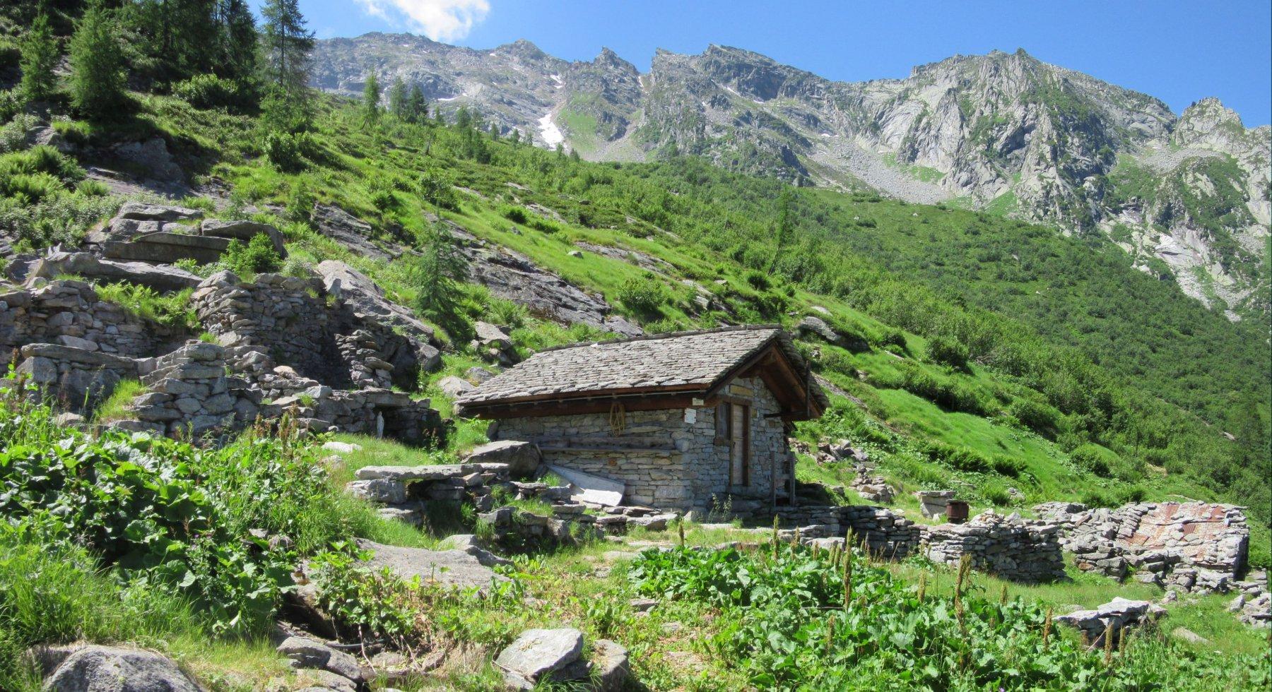 Amici della Valle Moriana (Bivacco) da Pestarena 2016-07-09