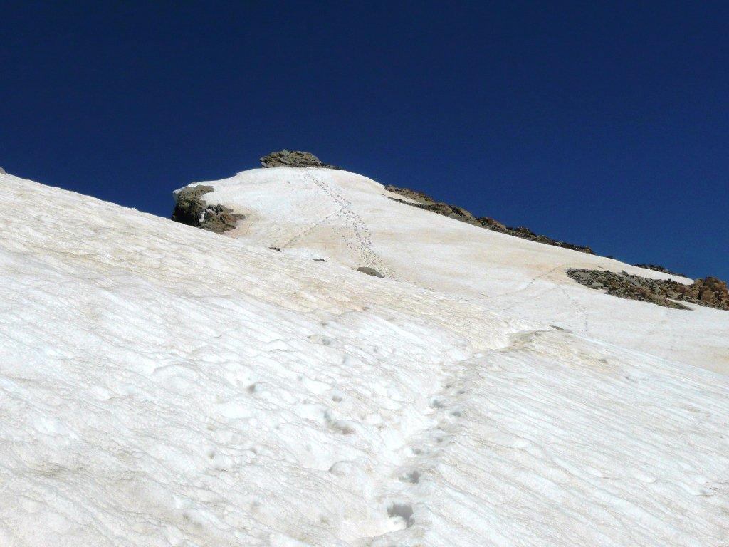 Arsine (Pic du Glacier d') Via Normale da Pré de Madame Carle 2016-07-09