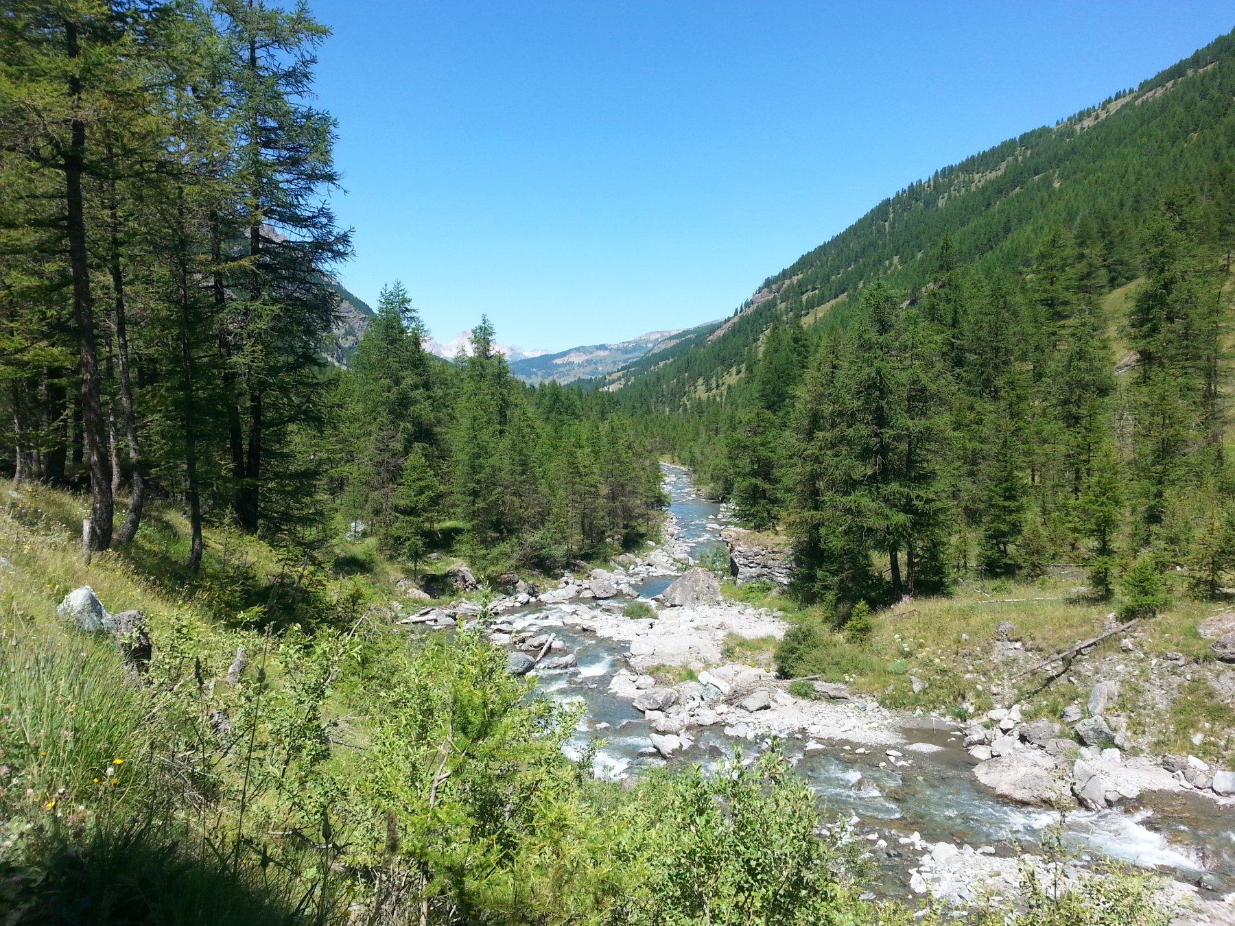 La verde valle Argentera