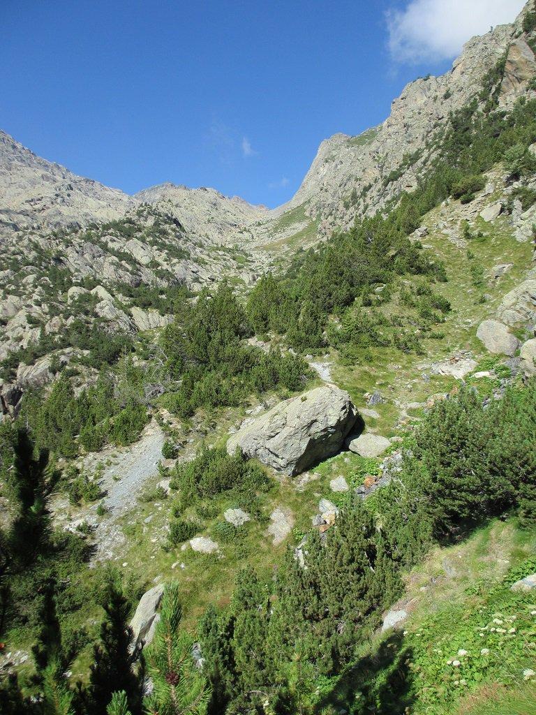 Il vallone che sale al lago Gelè