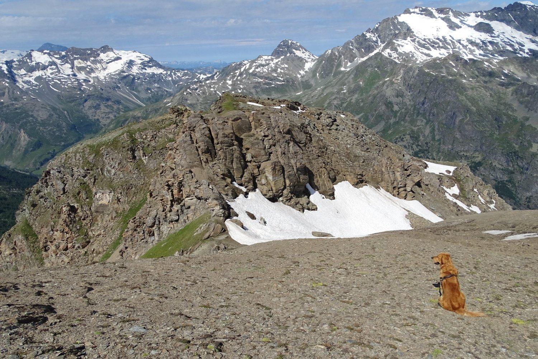 in prossimità del colletto a 2980 m