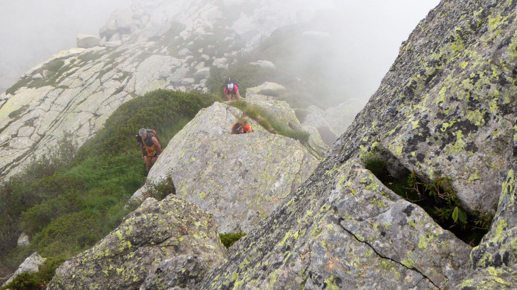 Camino (Monte) dal Santuario di Oropa per la Cresta Est 2016-07-31