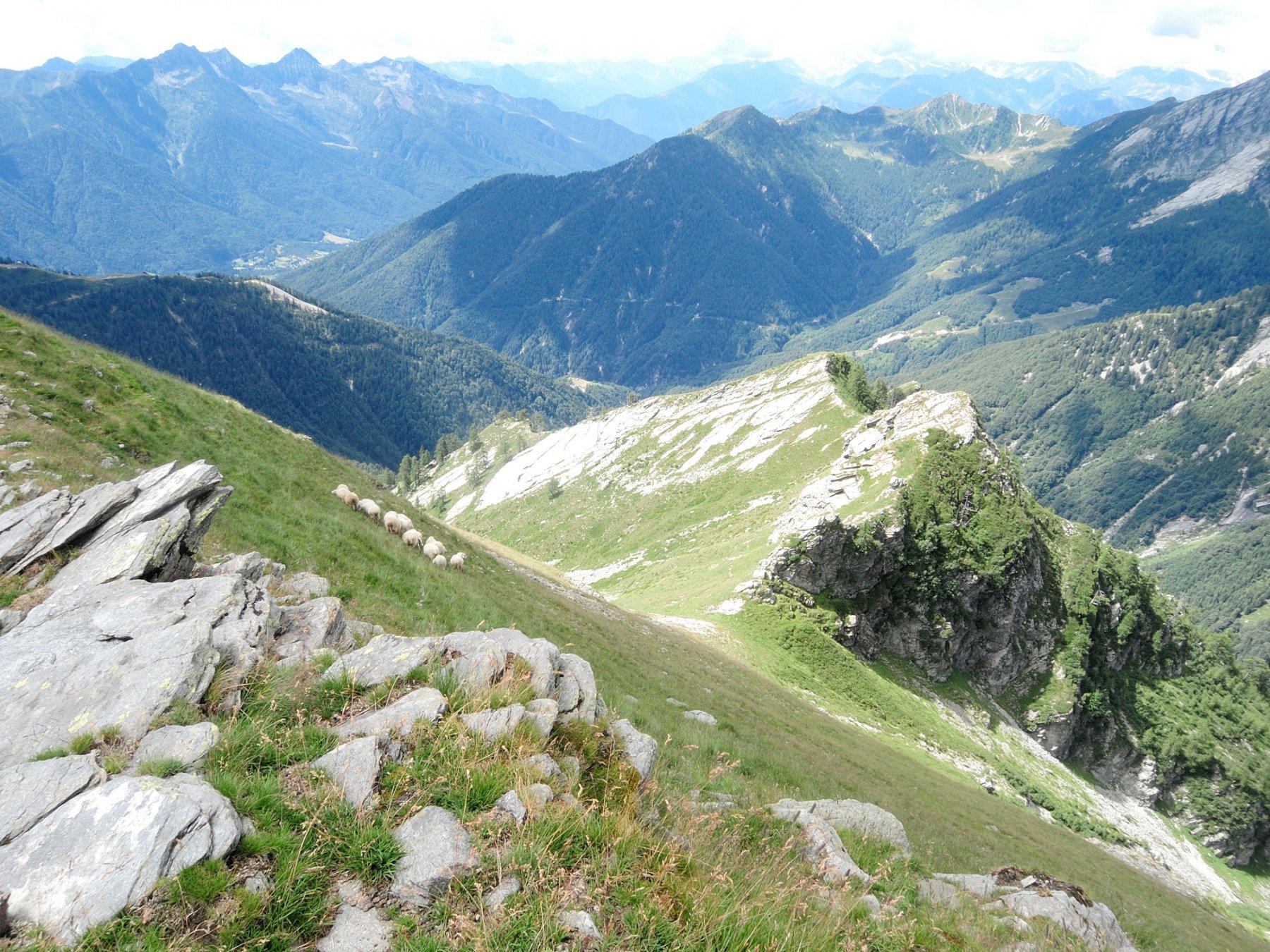 Dalla vetta verso la Cima Alta e la Valle di Cortino