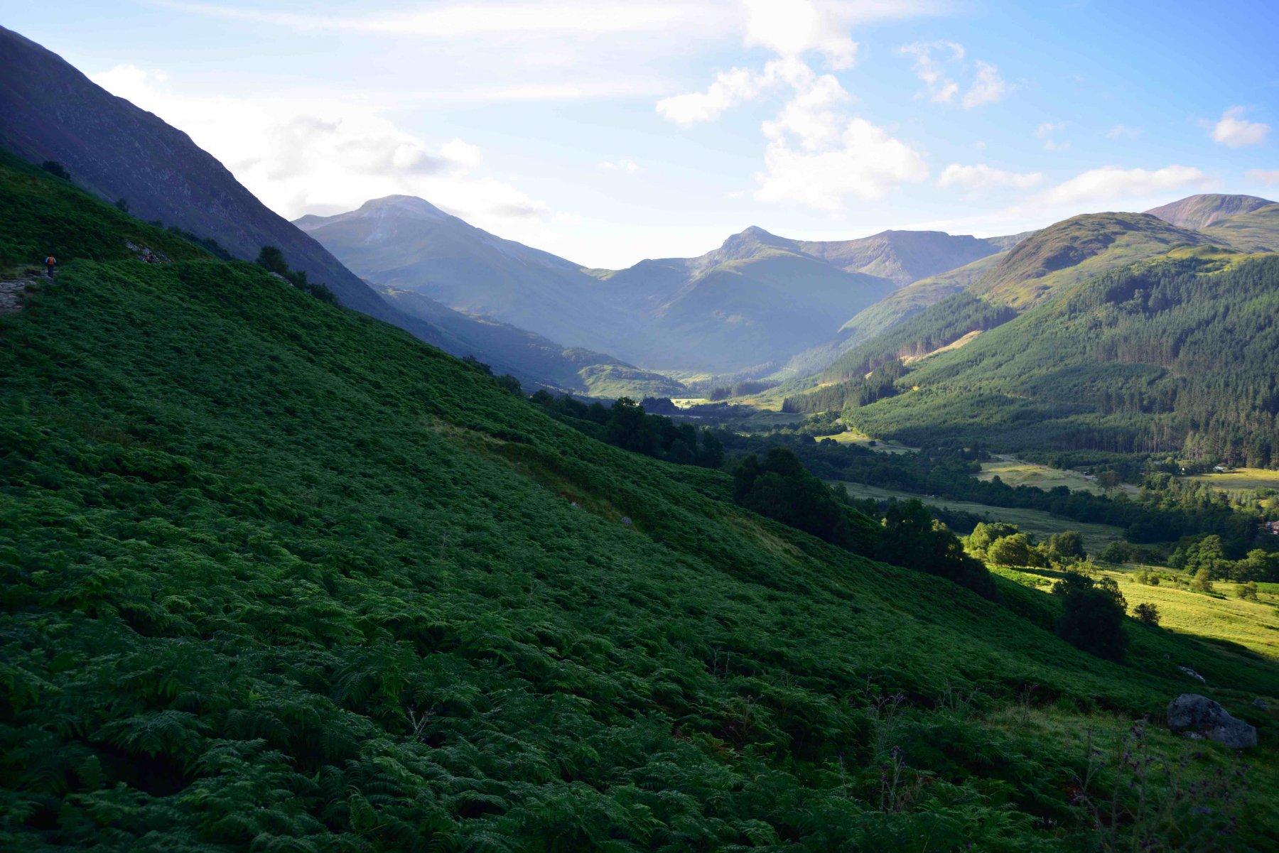 Il vallone nella prima parte del percorso.