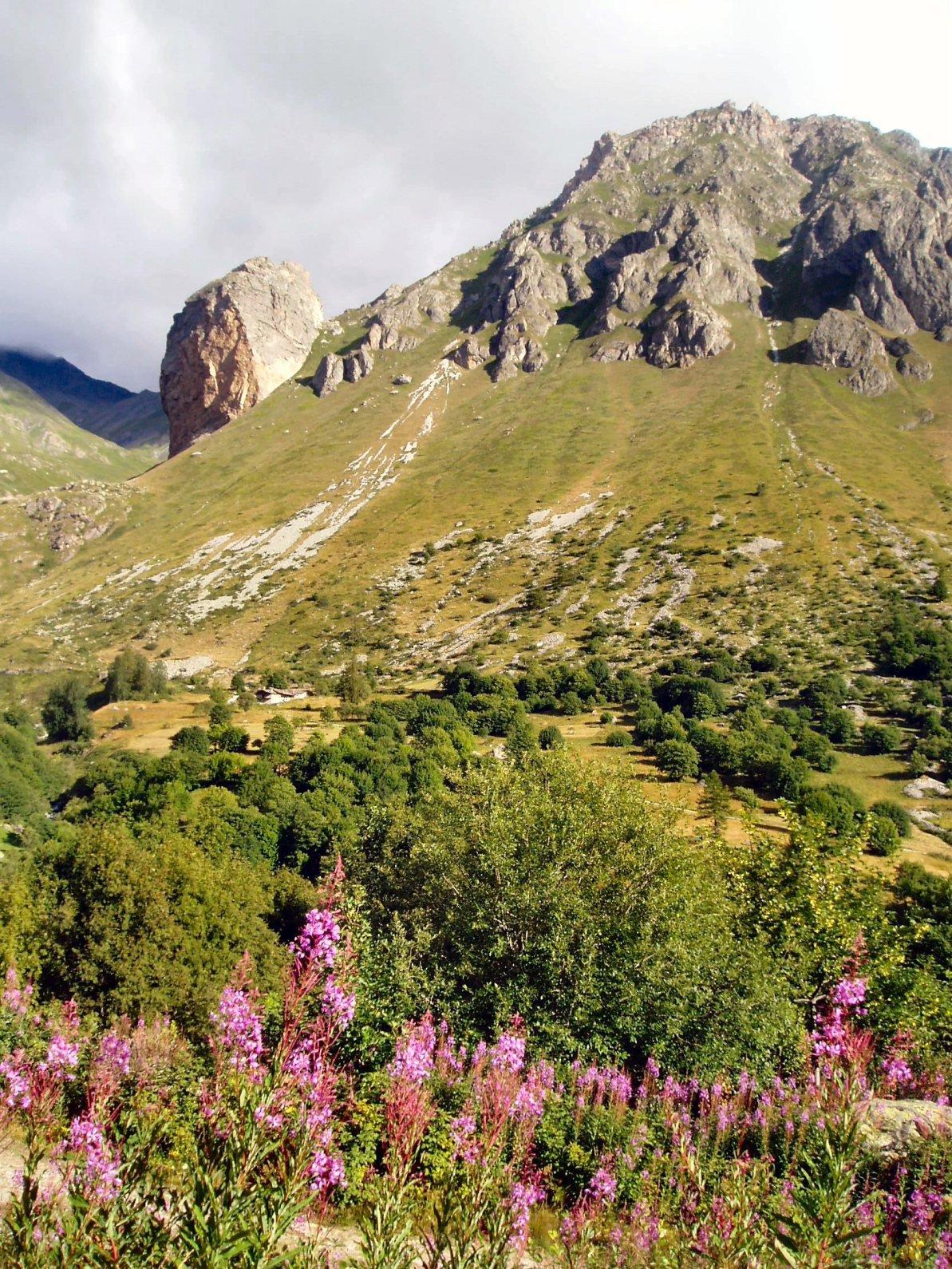 Rocca Senghi.