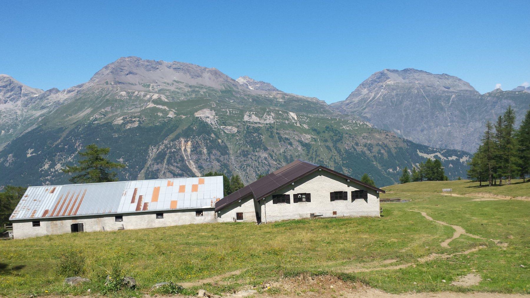 Alpe d'Arguel