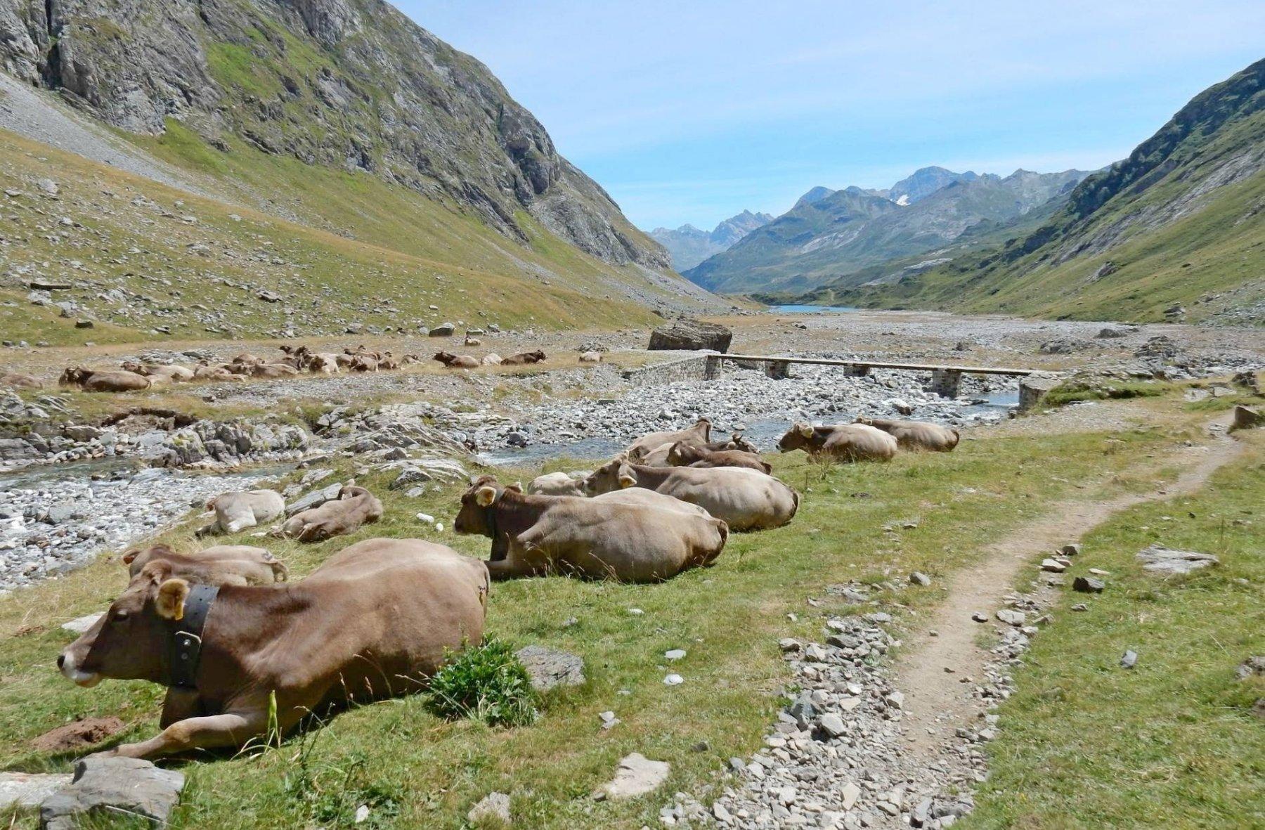 Verso le Barrage d'Ossoue.