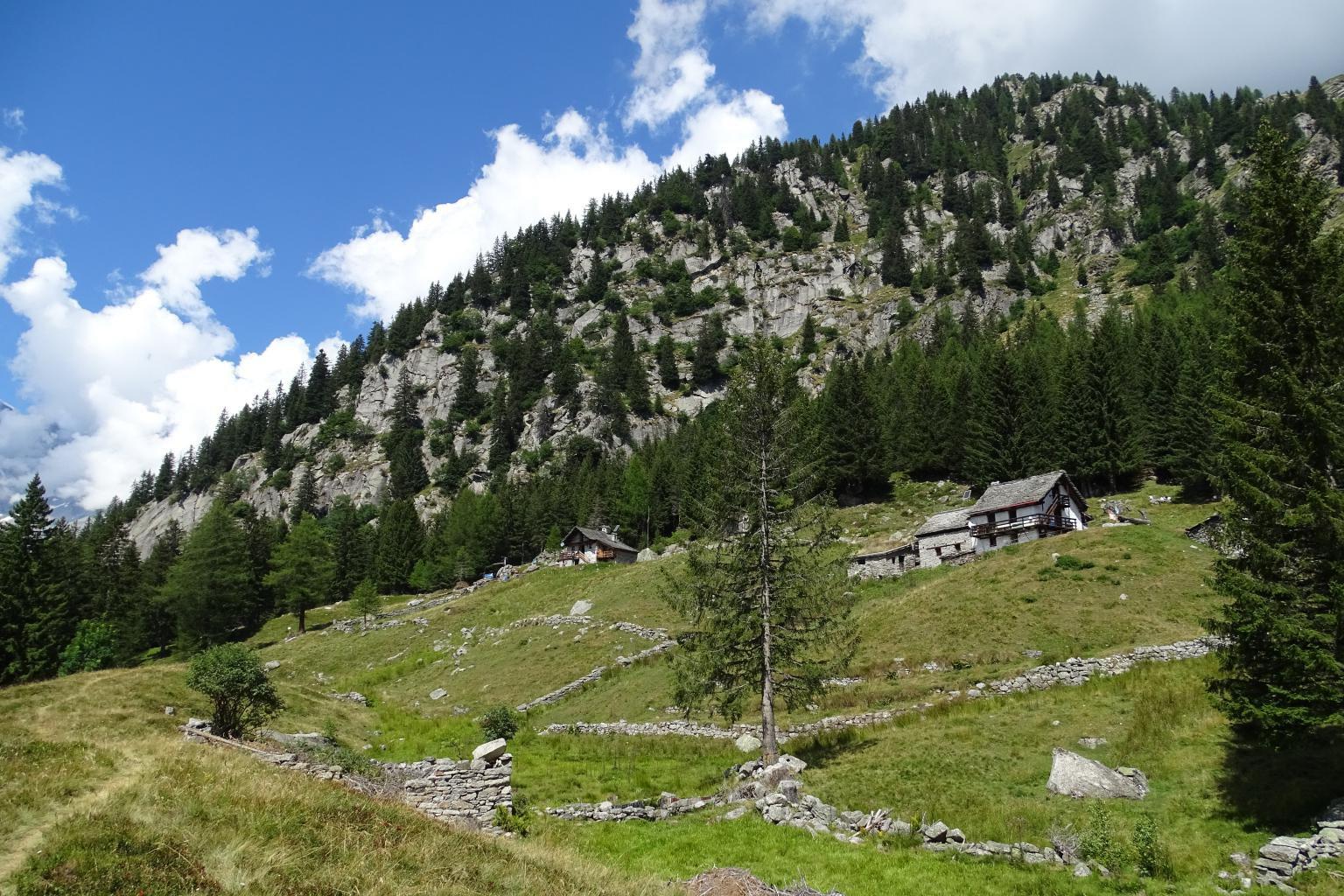 Alpe Cicerwald