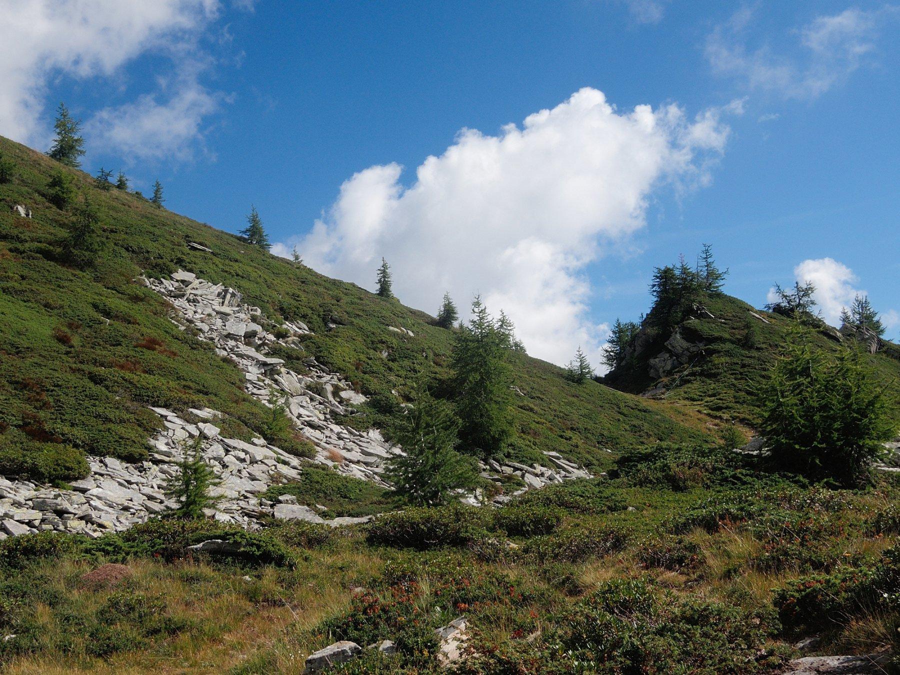 Bocchetta quotata 2041 sulla cresta Est