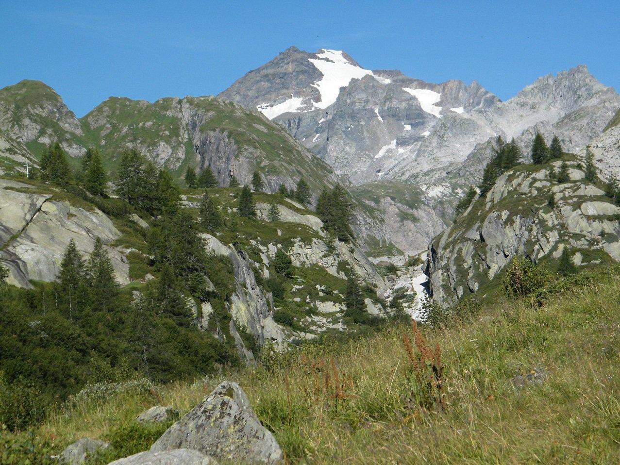La P.ta d'Arbola vista dal sentiero per il Rifugio.