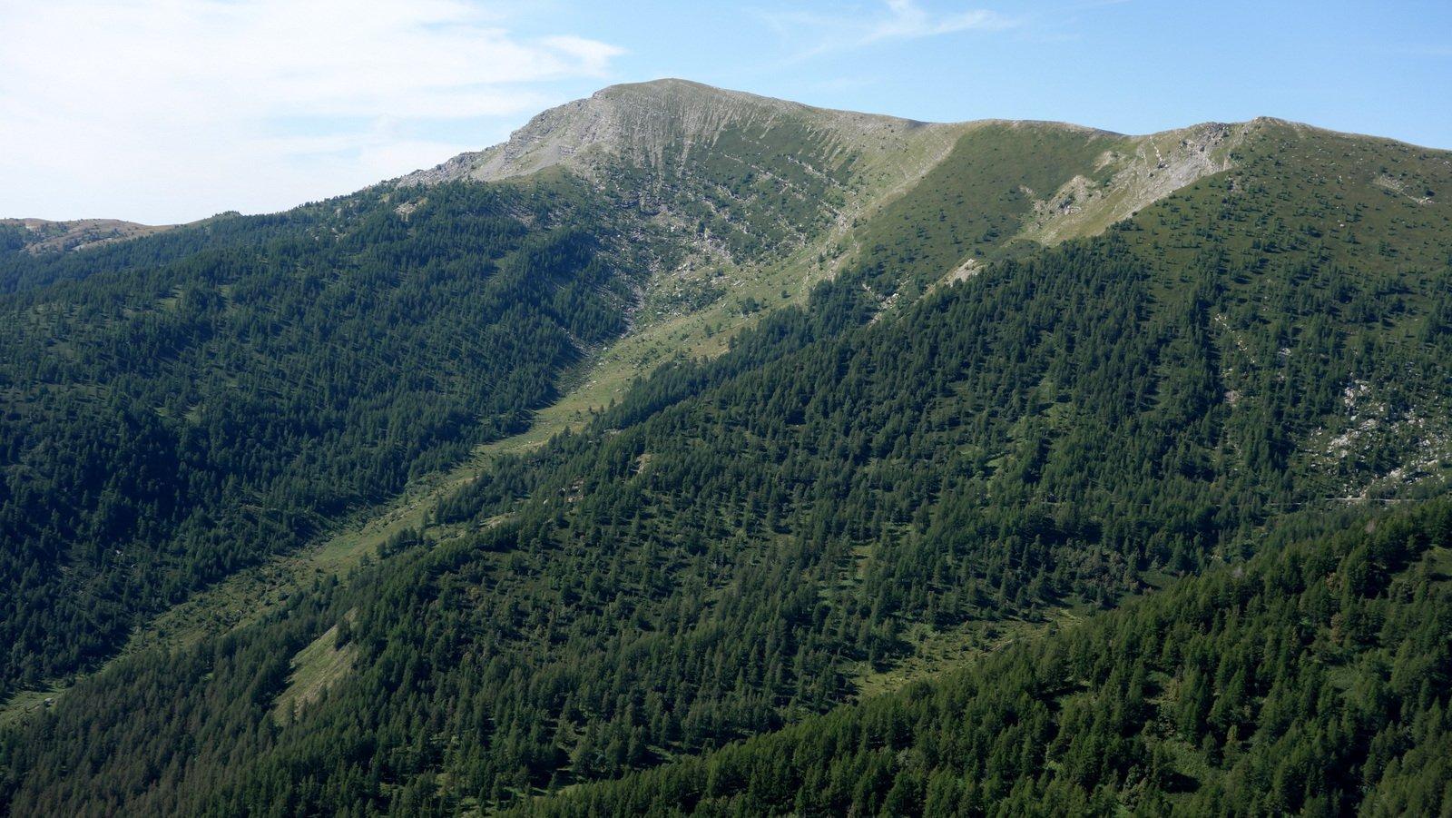 Monte Bertrand