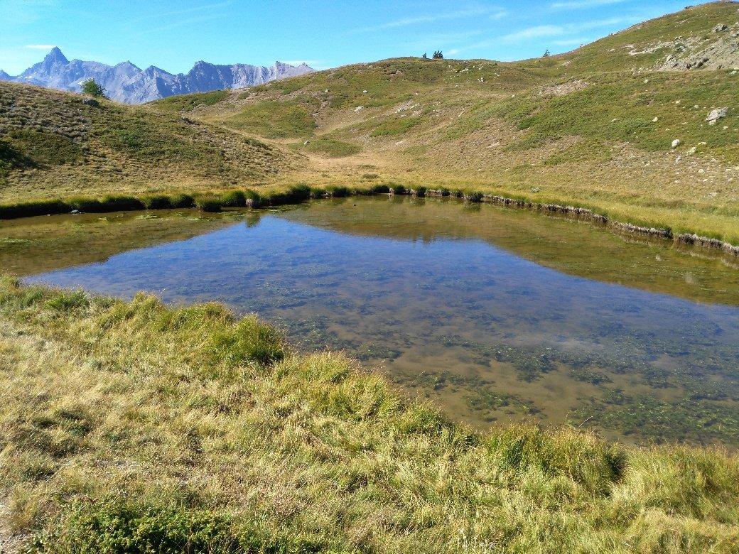 Lago Saurel.