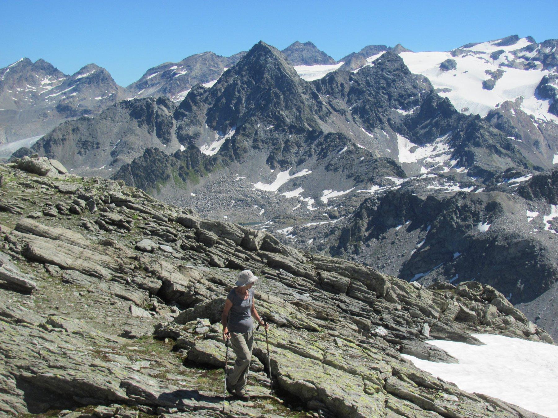 dalla cima, panorama verso il Rutor - Grand Assaly