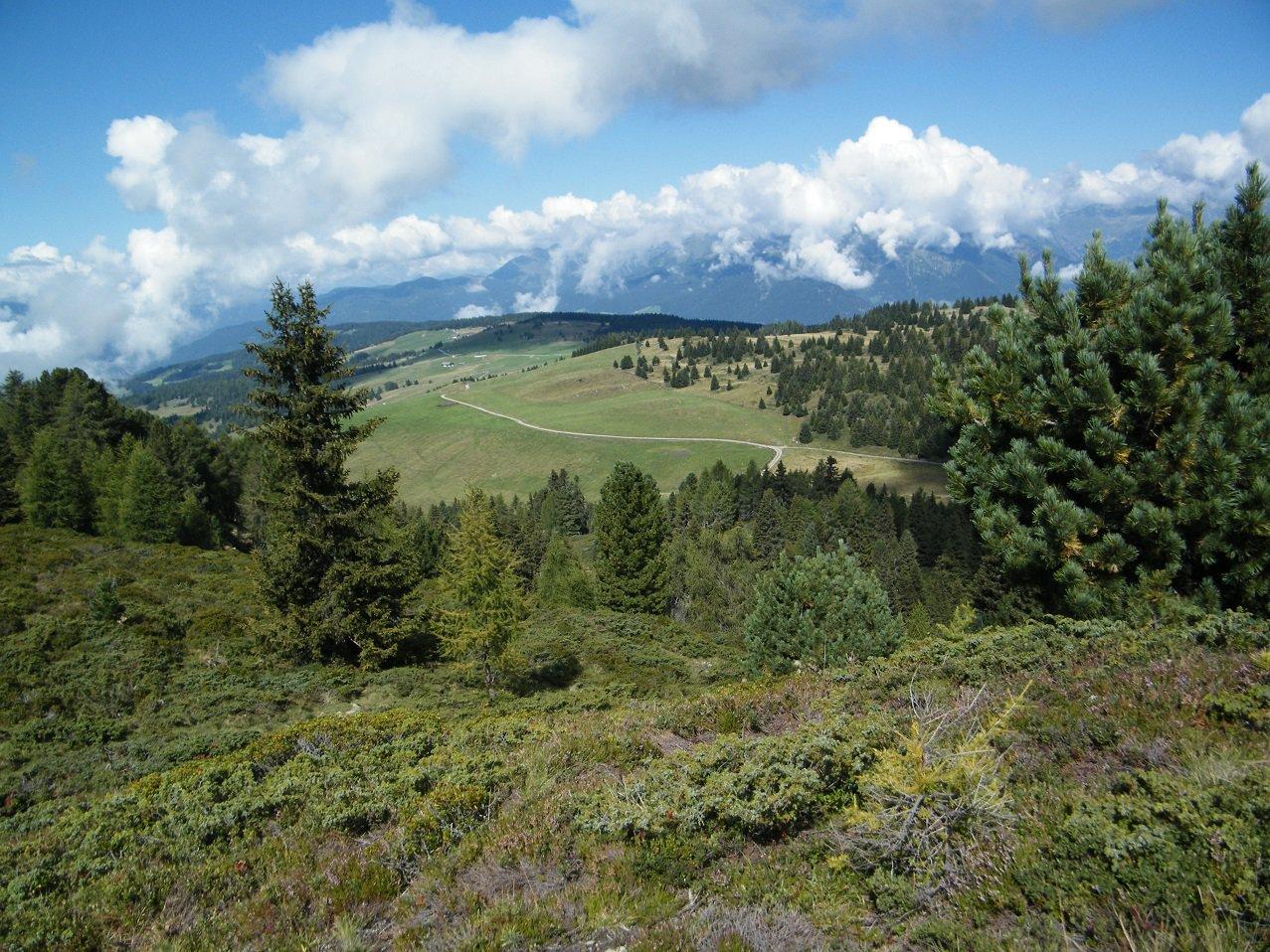 Panorama sull'Alpe di Luson da poco sotto la vetta