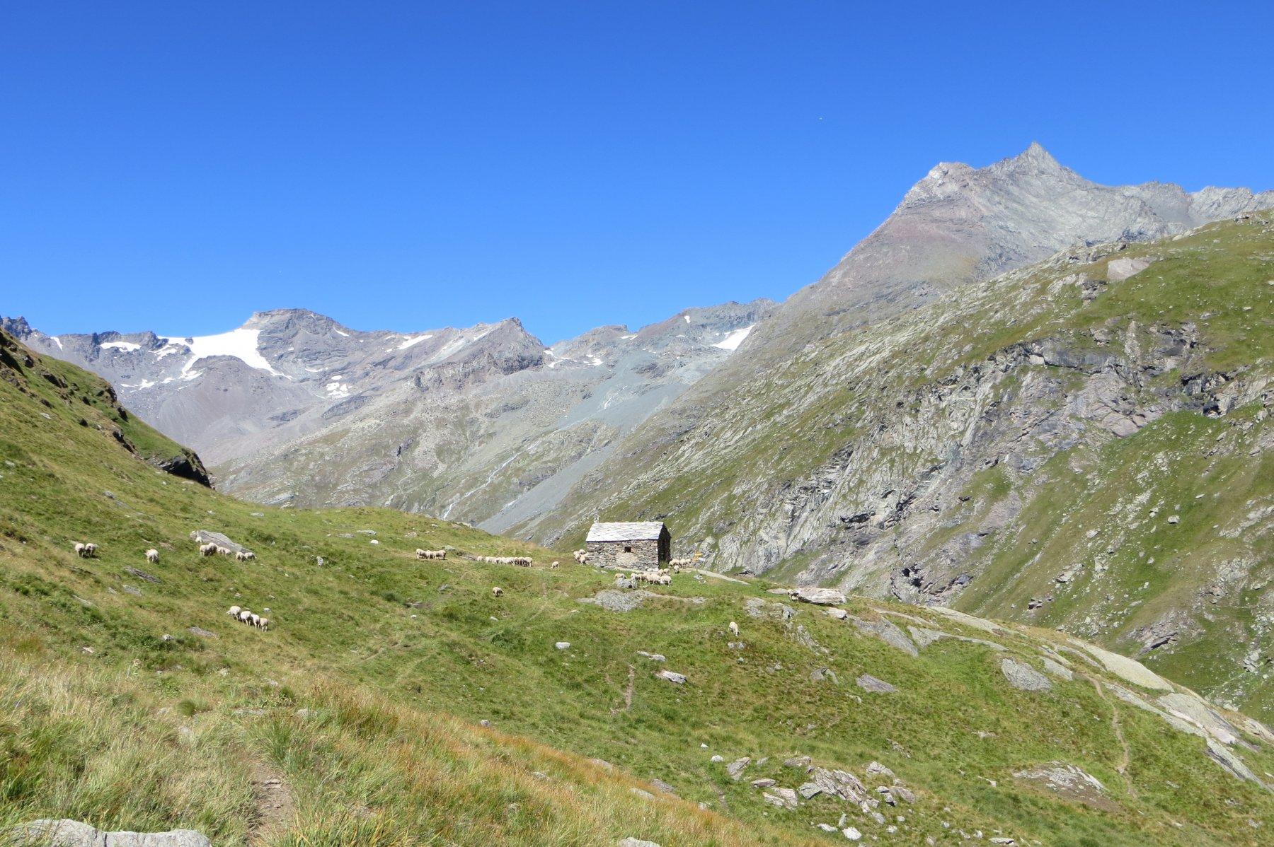 vallon de la Lombarde, Cabane des Bergeres
