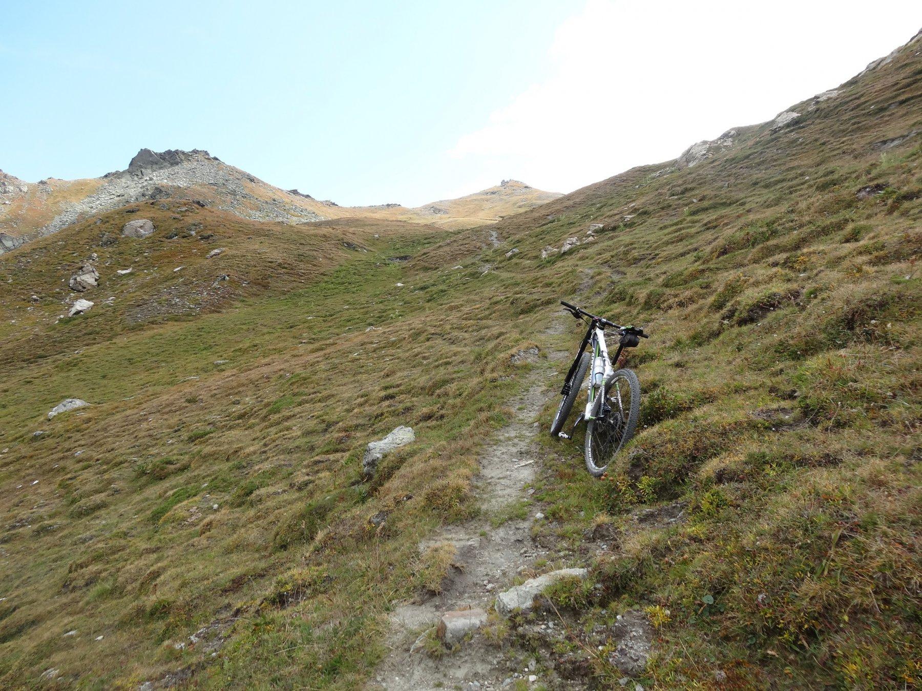 il sentiero per il colle