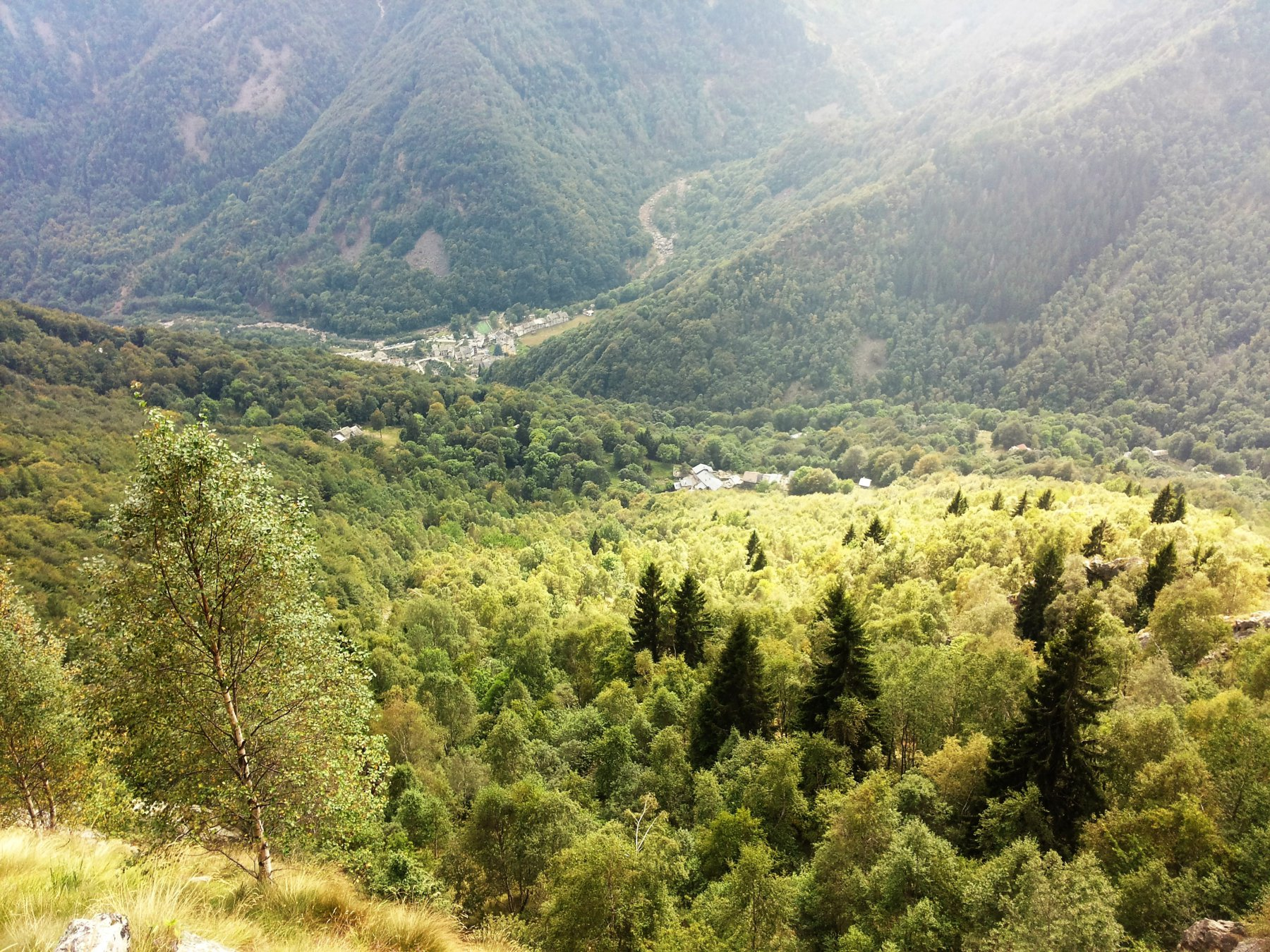 il fitto bosco attraversato ed in fondo il paese di Piedicavallo