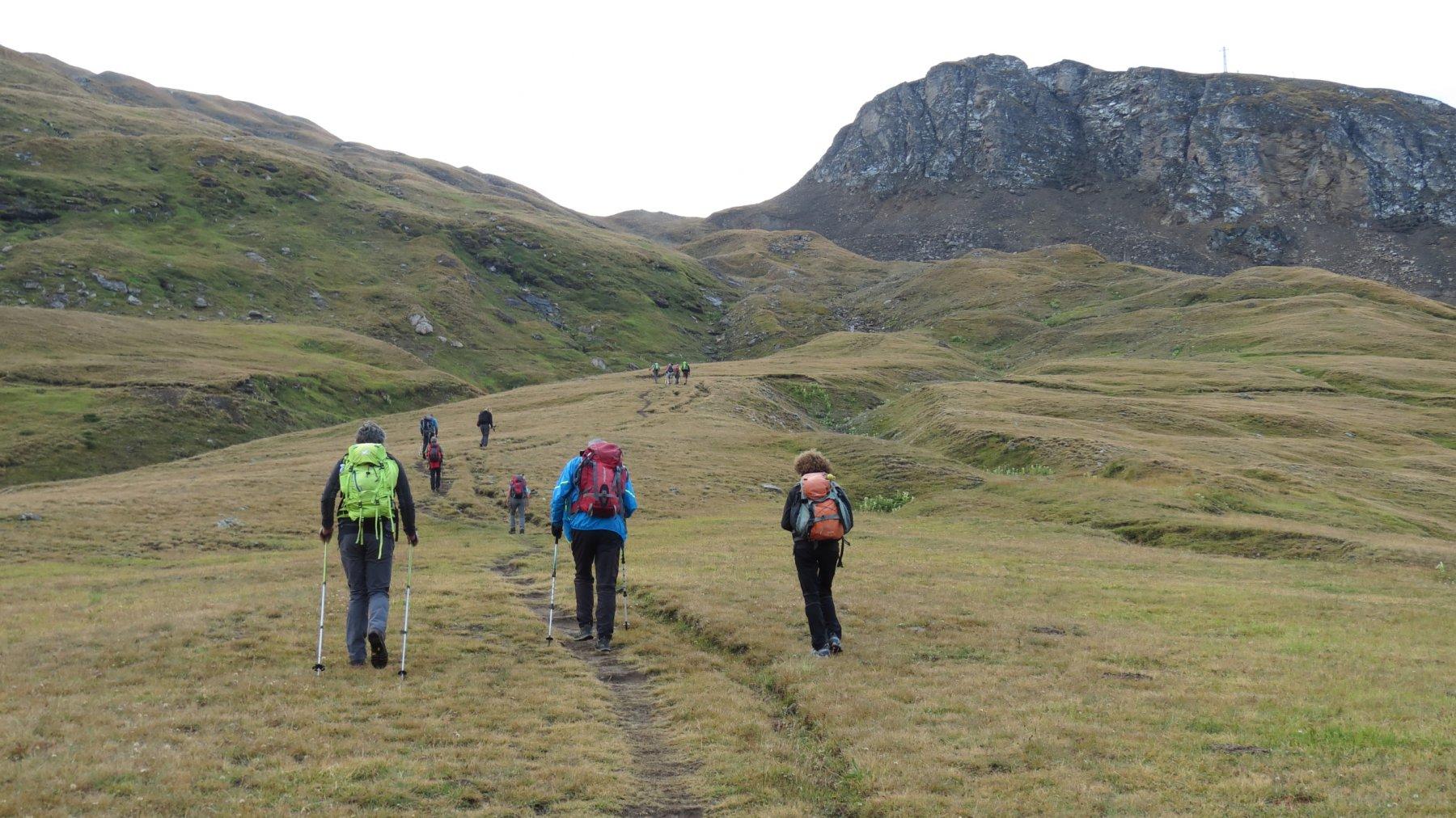 i pendii erbosi che portano verso il Passo Busin