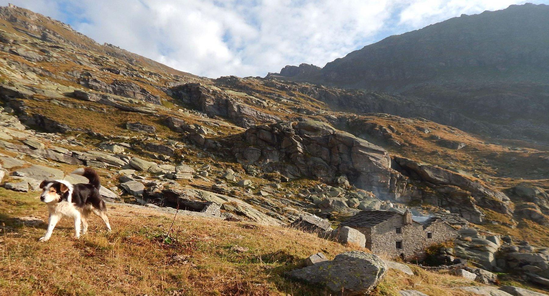 Alpe Gias Vej