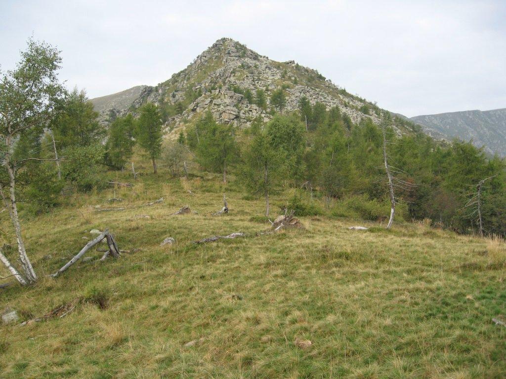 Castello Oddino