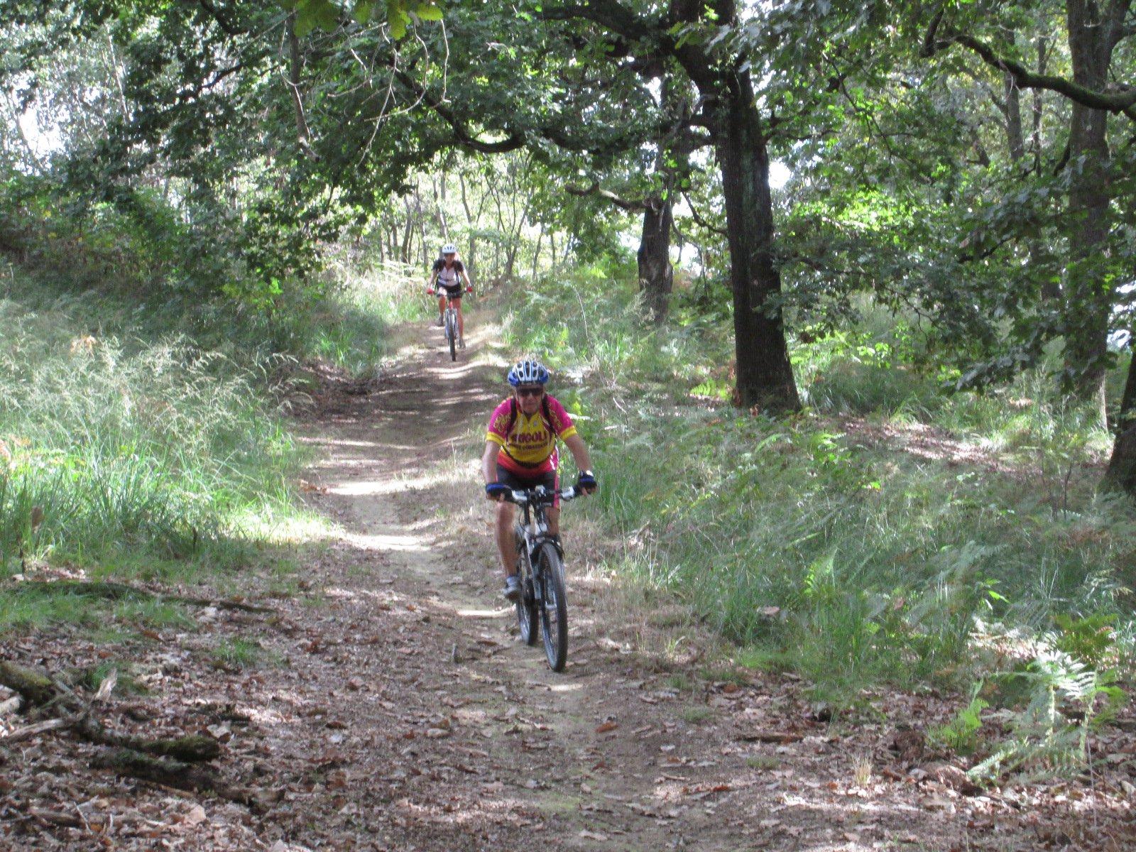 piacevoli single track nel bosco