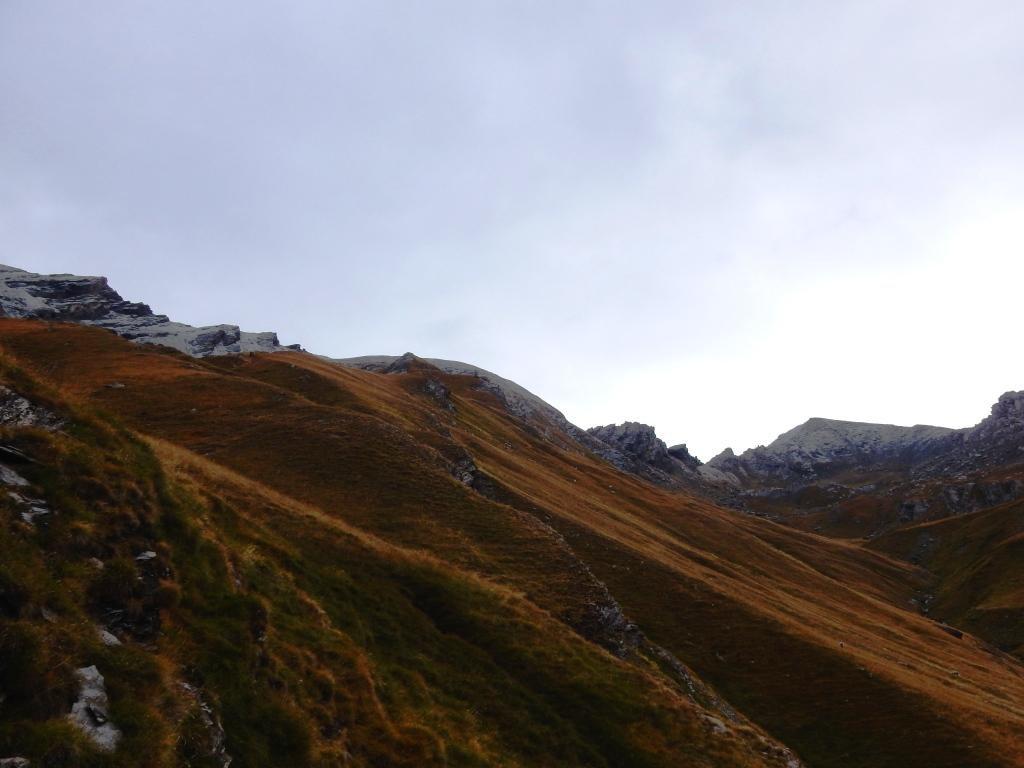 salendo nel Vallone di Soustra ( verso il  Passo Omonimo e quello della Losetta )