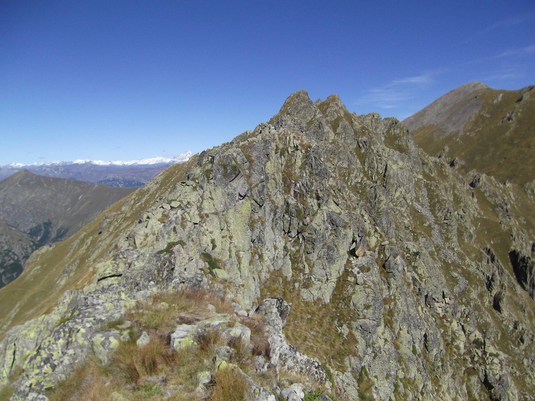Cresta e Cima della Vagliotta dalla Punta del Limbo.