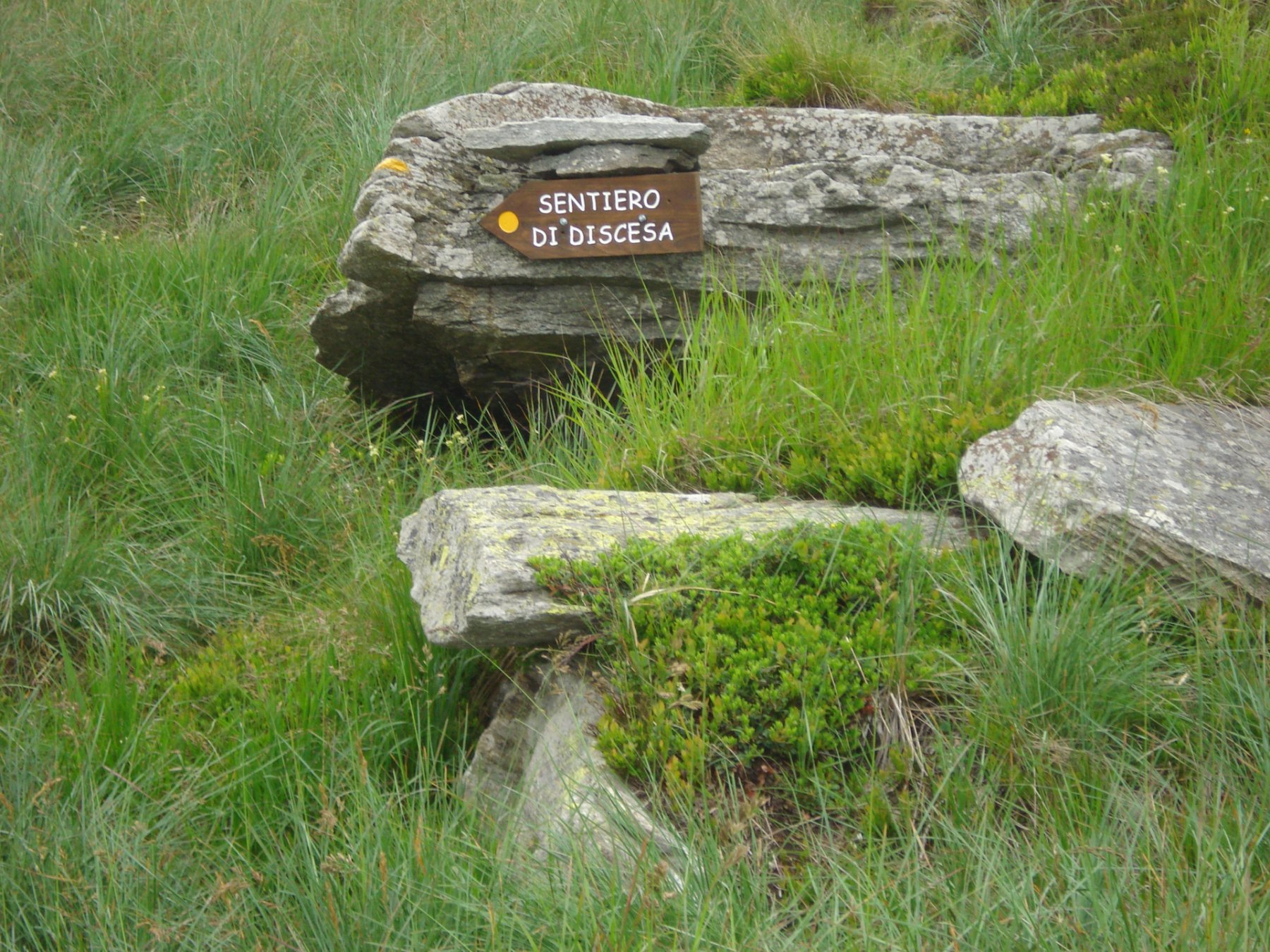 oppure.. ..se non si vuole scendere in doppia,  superando ancora qualche gradino di roccia,  si giunge sui prati sommitali  dove si scorgono le indicazioni per la discesa a piedi sulla destra orografica della parete..