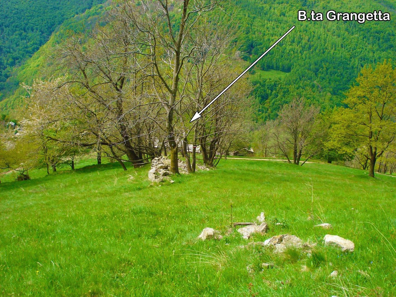 ..avvicinamento alle pareti risalendo i ripidi prati che da B.ta Grangetta portano a B.ta Bustera posta più in alto (non ancora visibile in foto)
