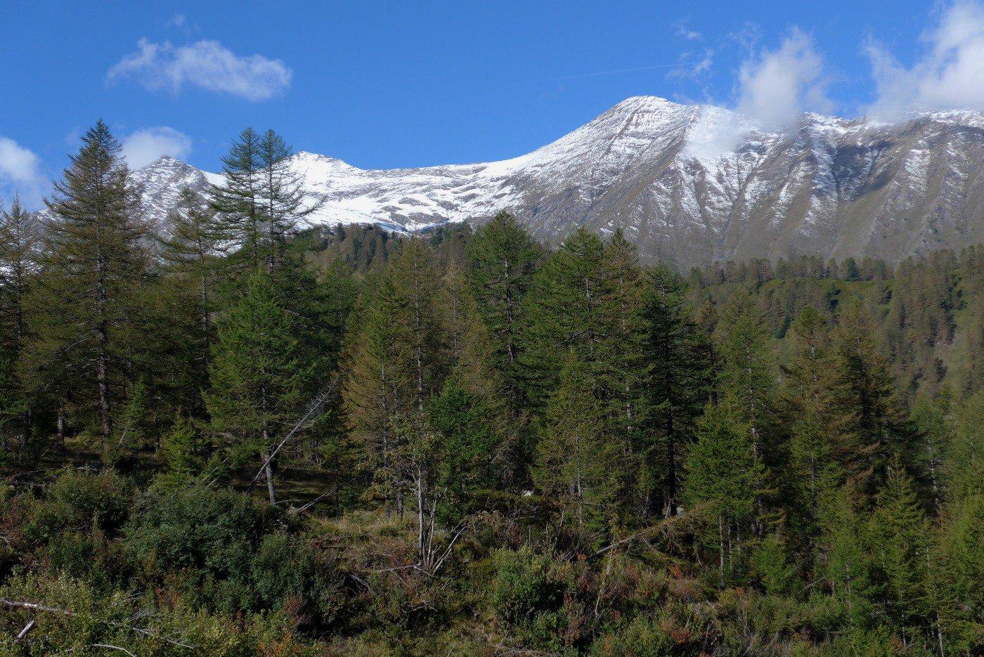 Salendo , bella vista sul Gran Queyron