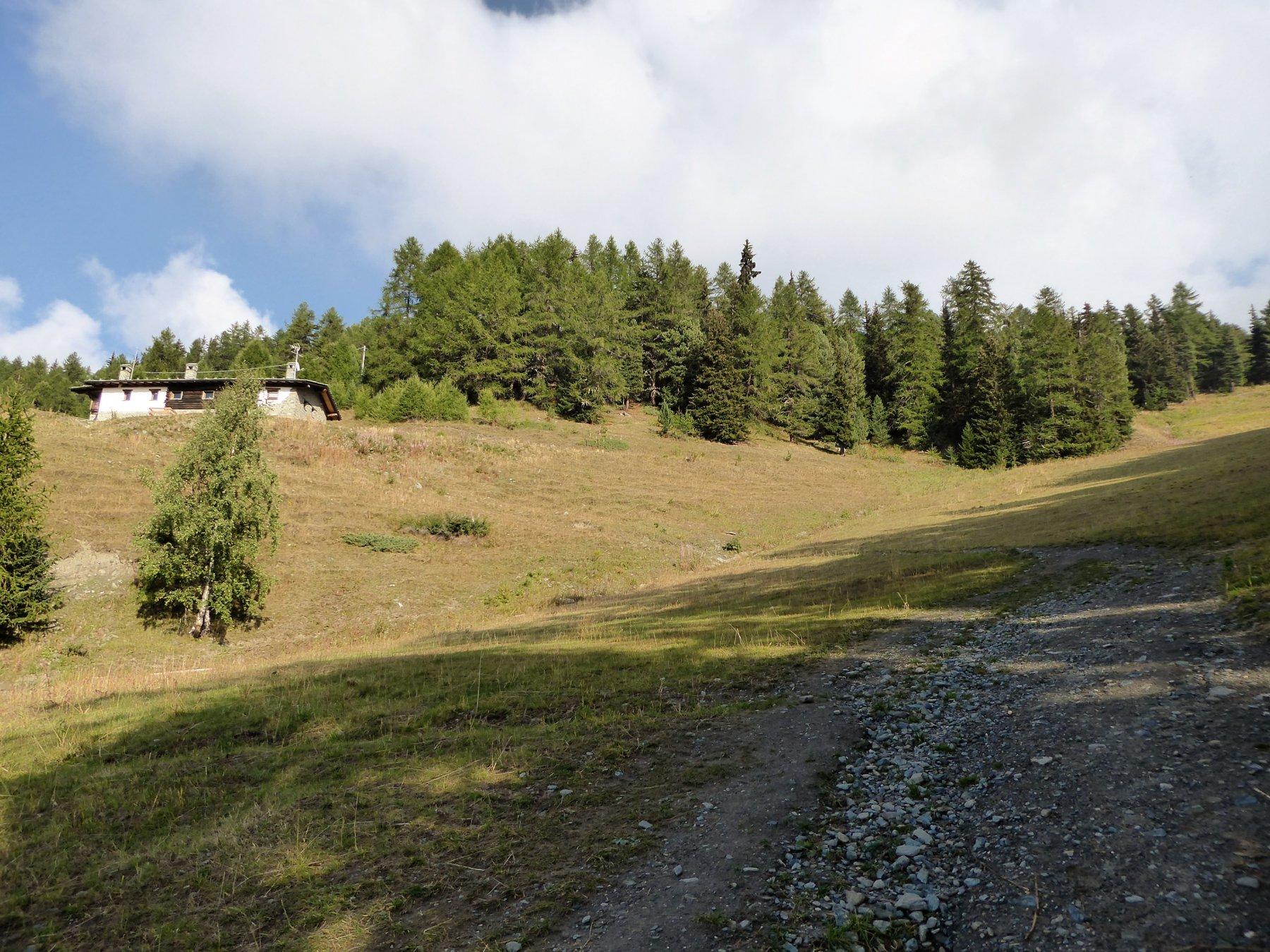 chiusura dell'anello: a destra la pista risalita all'andata, a sinistra il 16 dall'alpeggio Chamolè