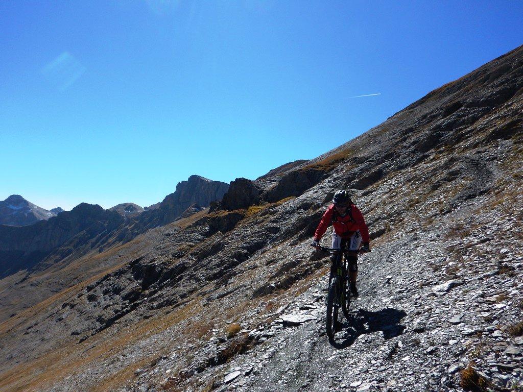 Esemplare di ciclosciatorealpinista...