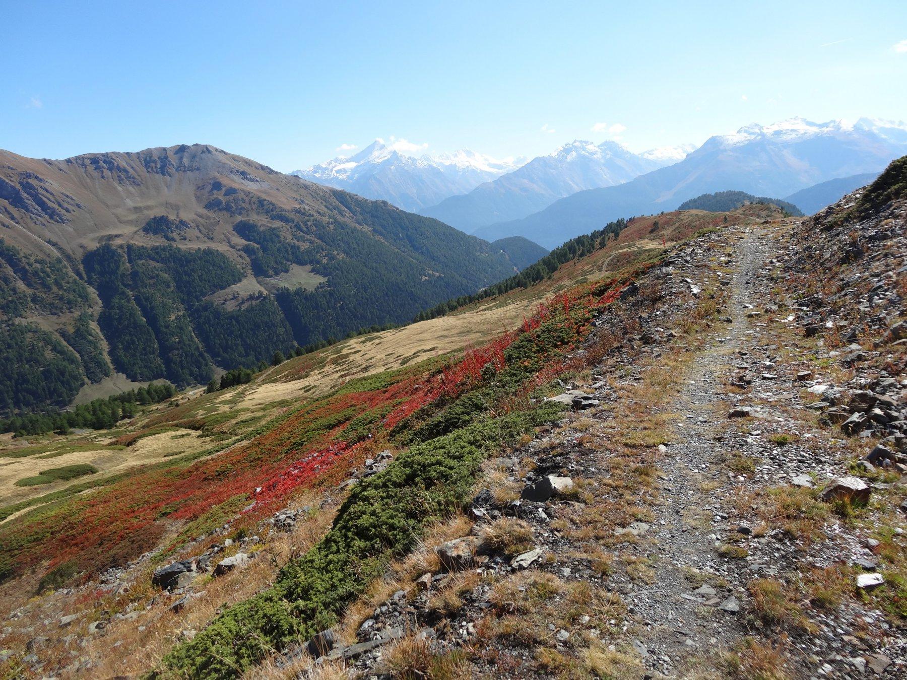 il sentiero che porta al col de bard