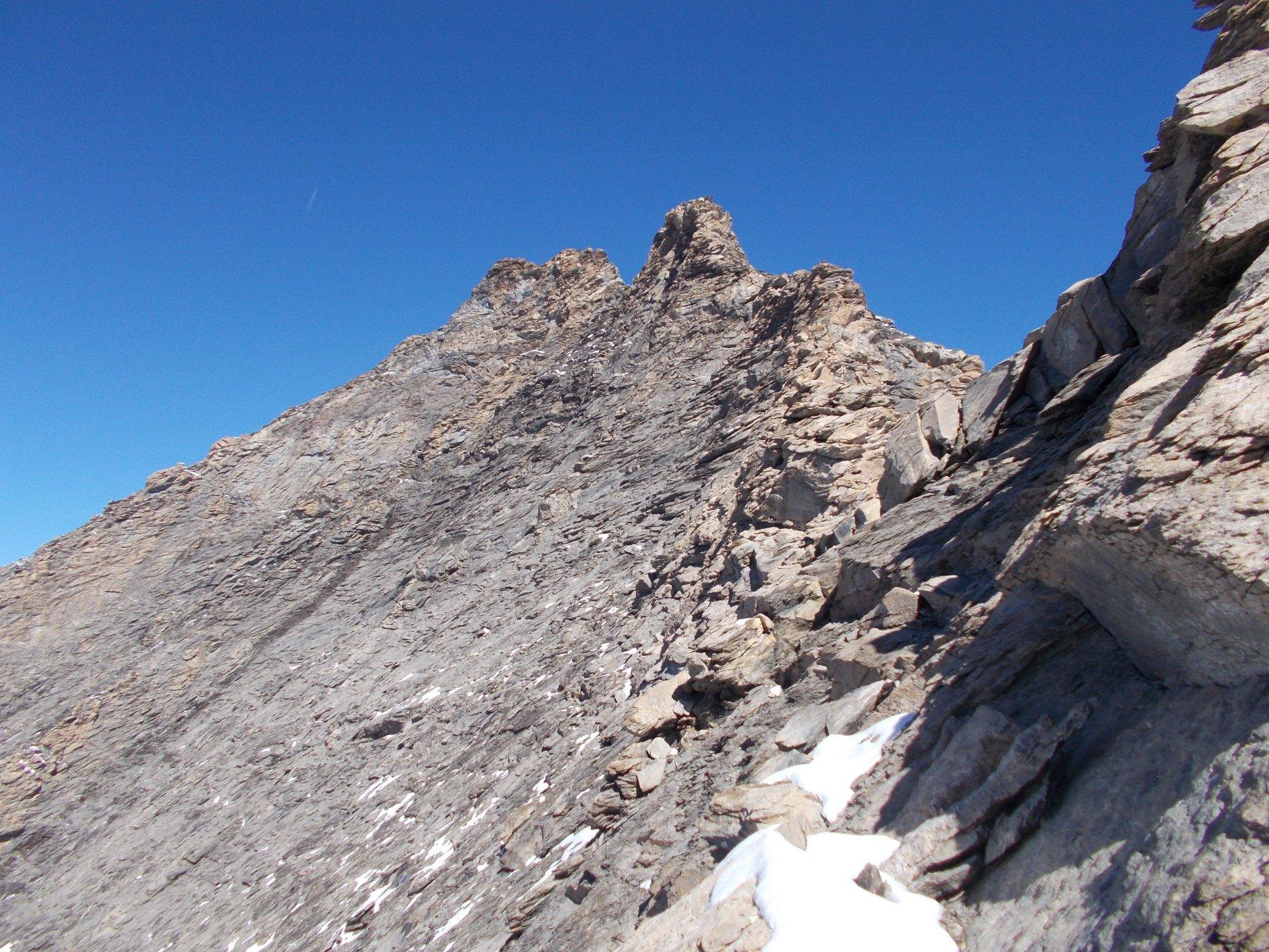 la cresta..cosi come si presenta dal Col du Grand Fond..