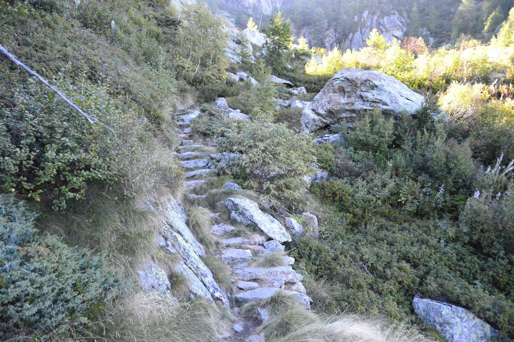 Sentiero ottimamente scalinato